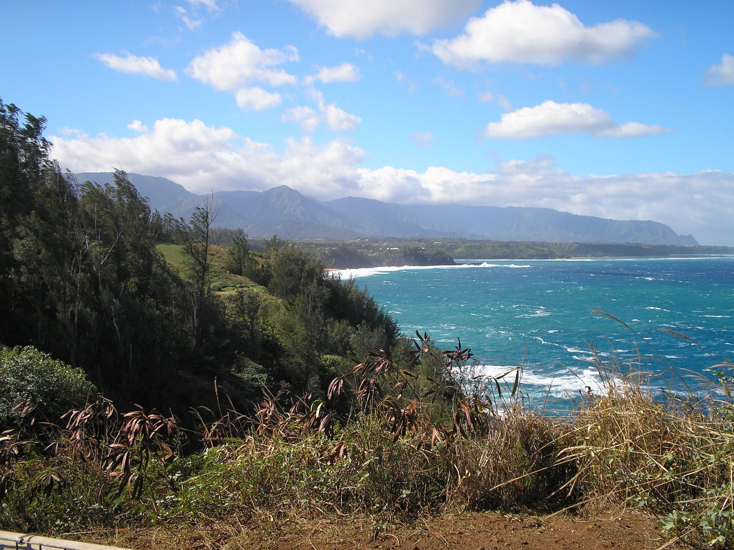 north shore from kilauea point.jpg