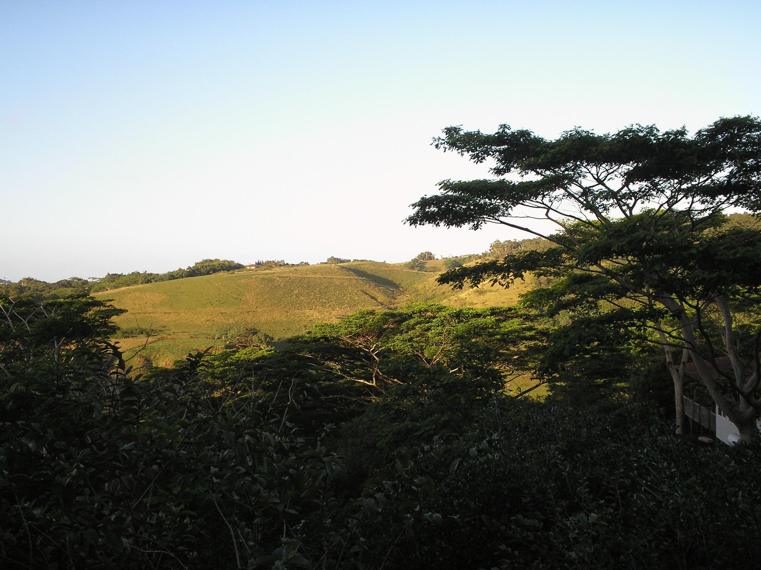view from halekua.jpg