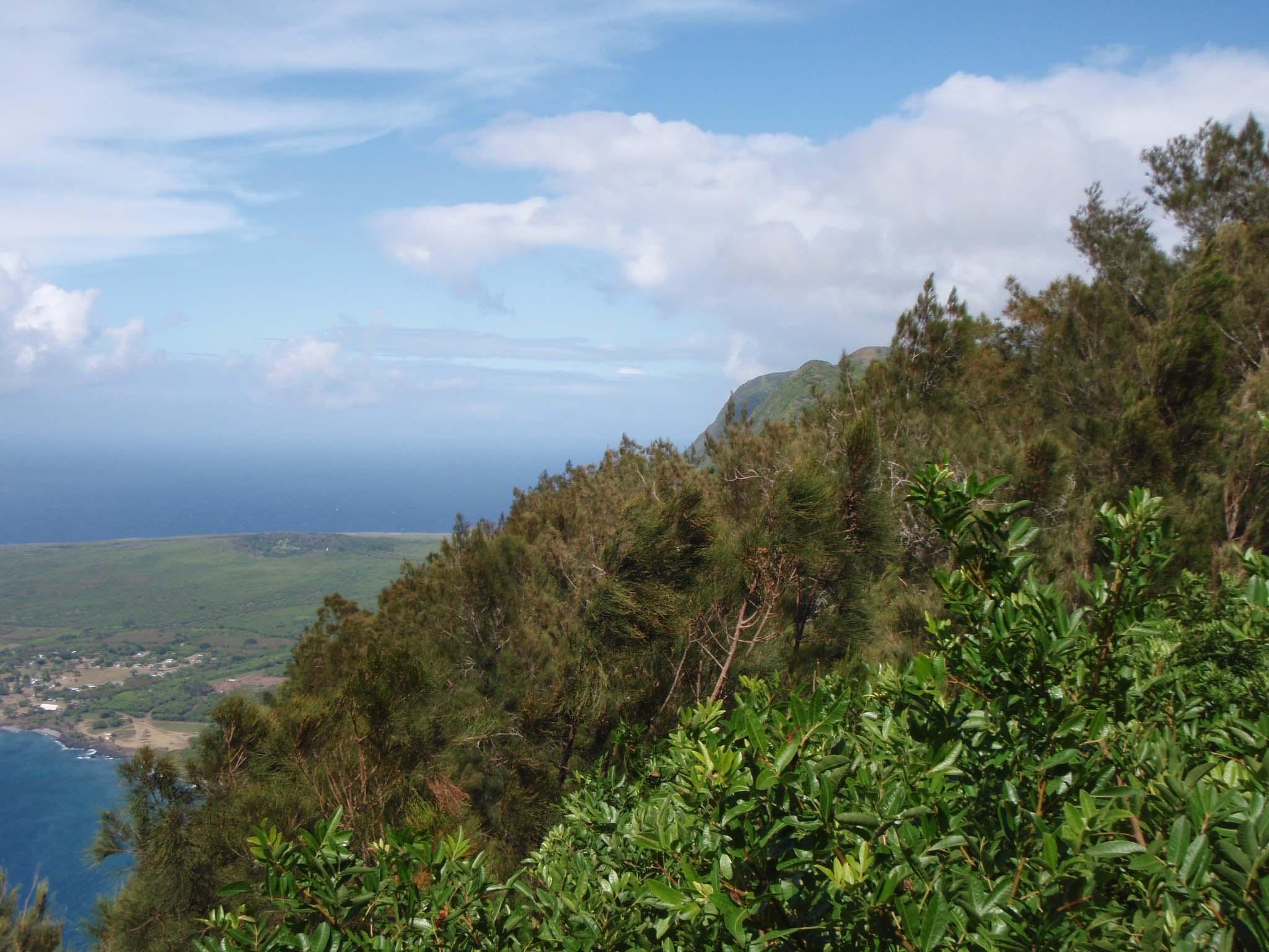 Molokai north shore.jpg