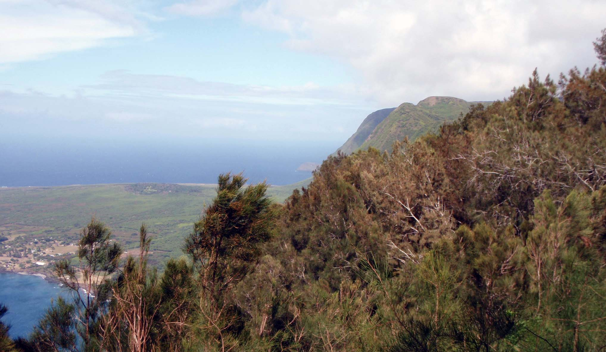 Molokai's north shore.jpg