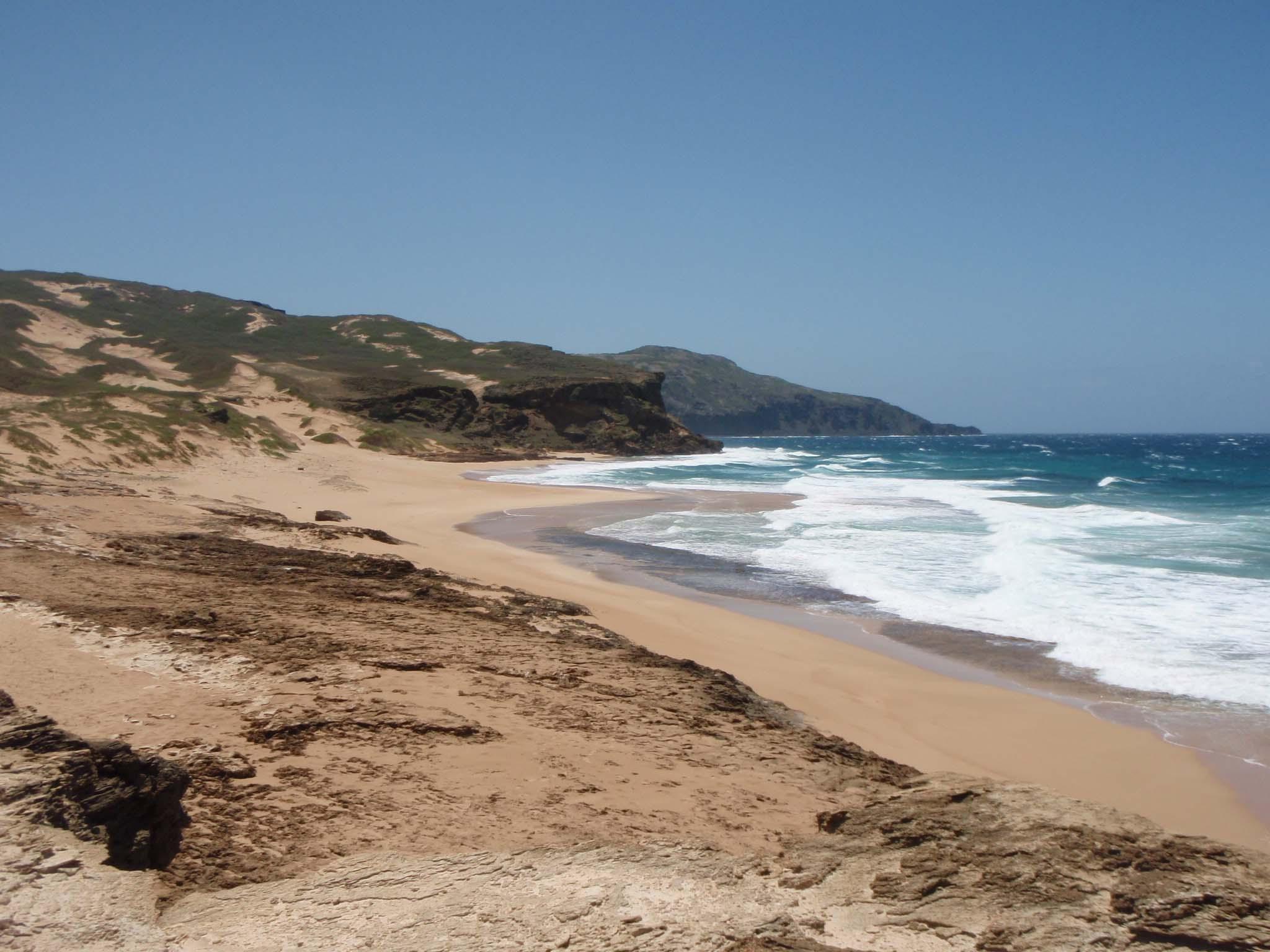 undeveloped shoreline.jpg