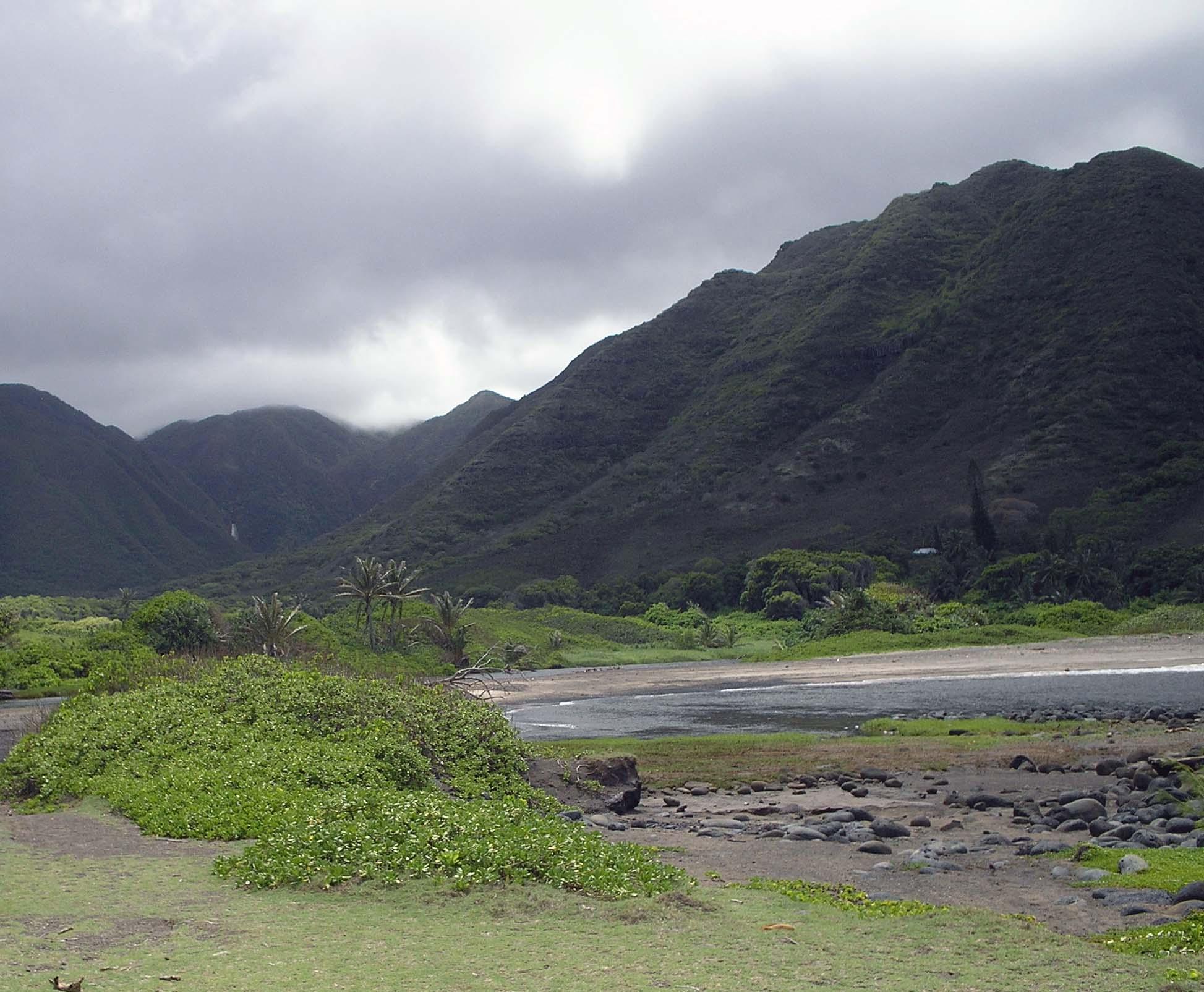 halawa valley 2.jpg