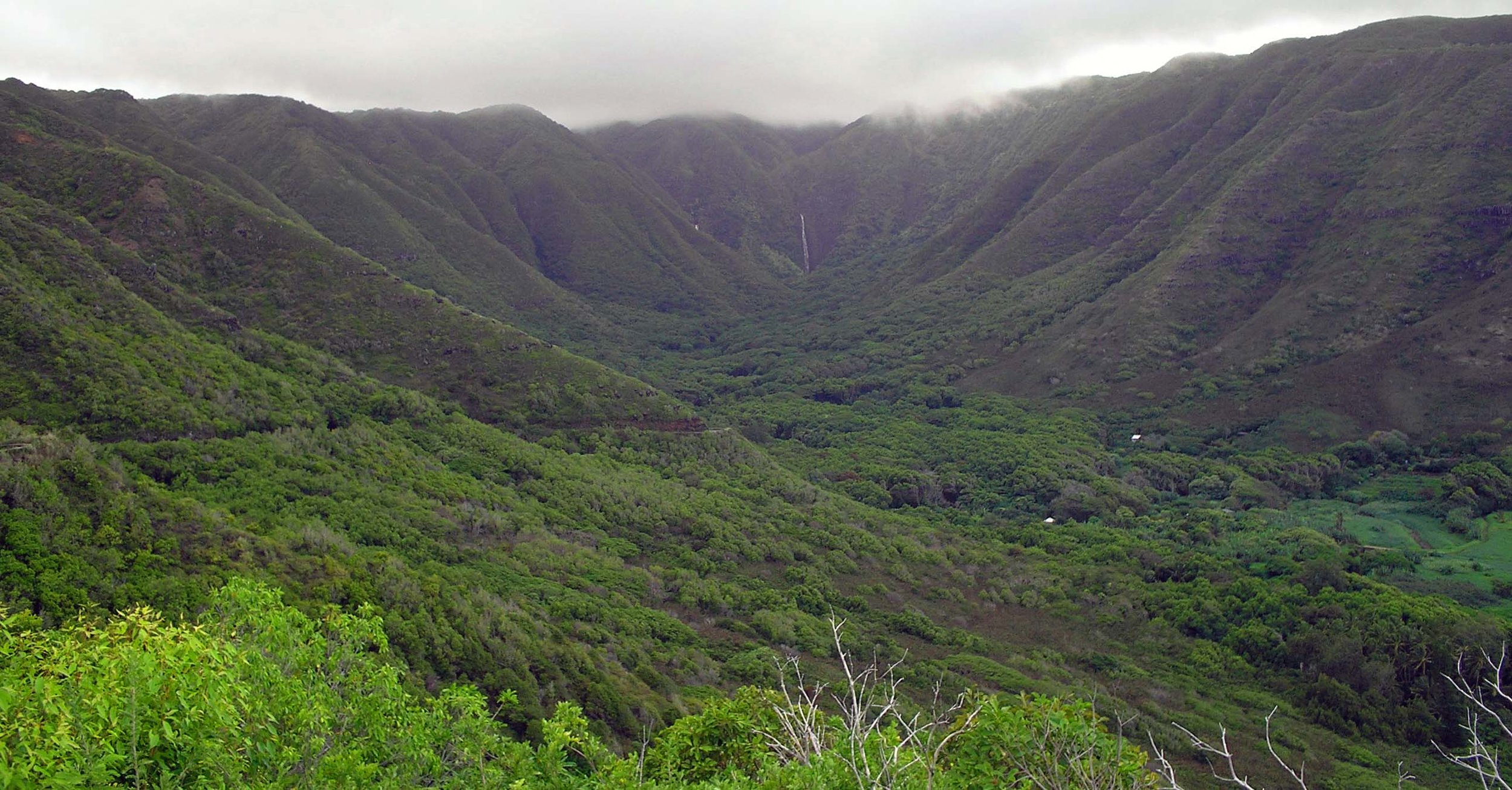 halawa valley 5.jpg