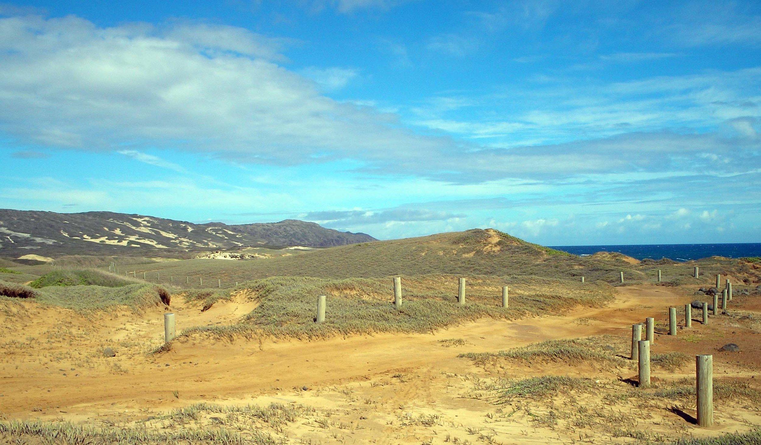 TNC trail.jpg