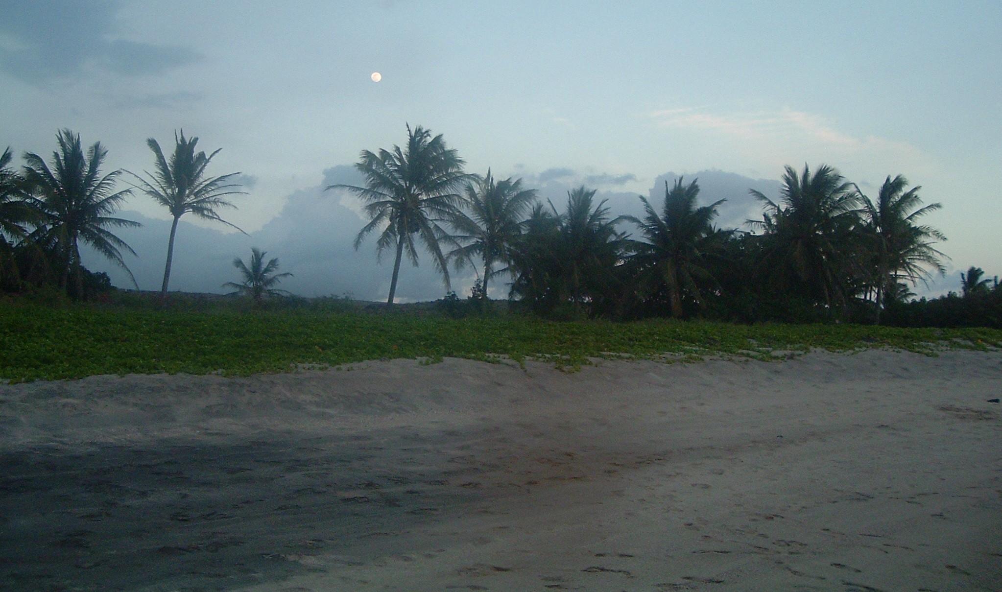 halape beach.JPG