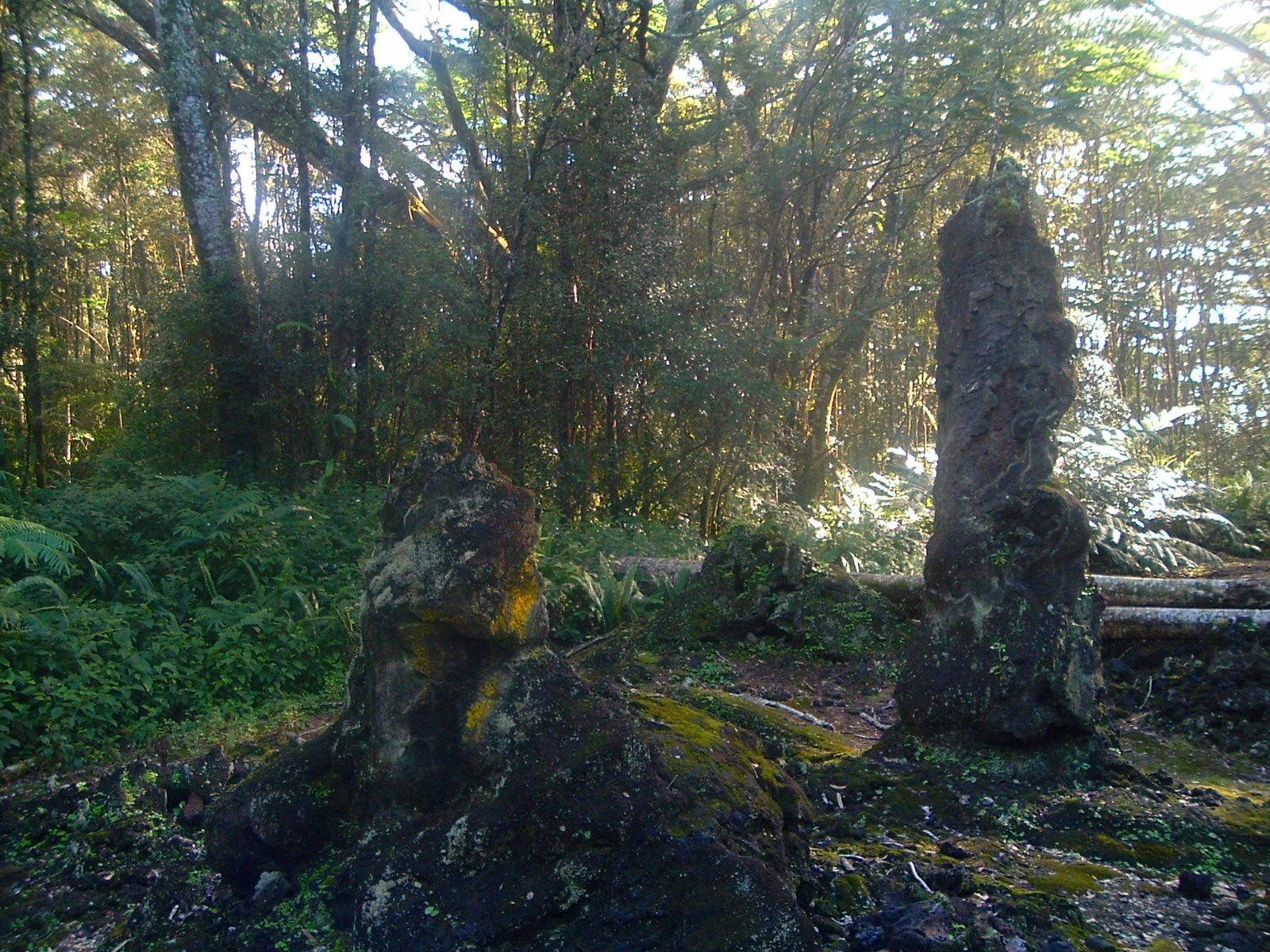 lava trees.JPG