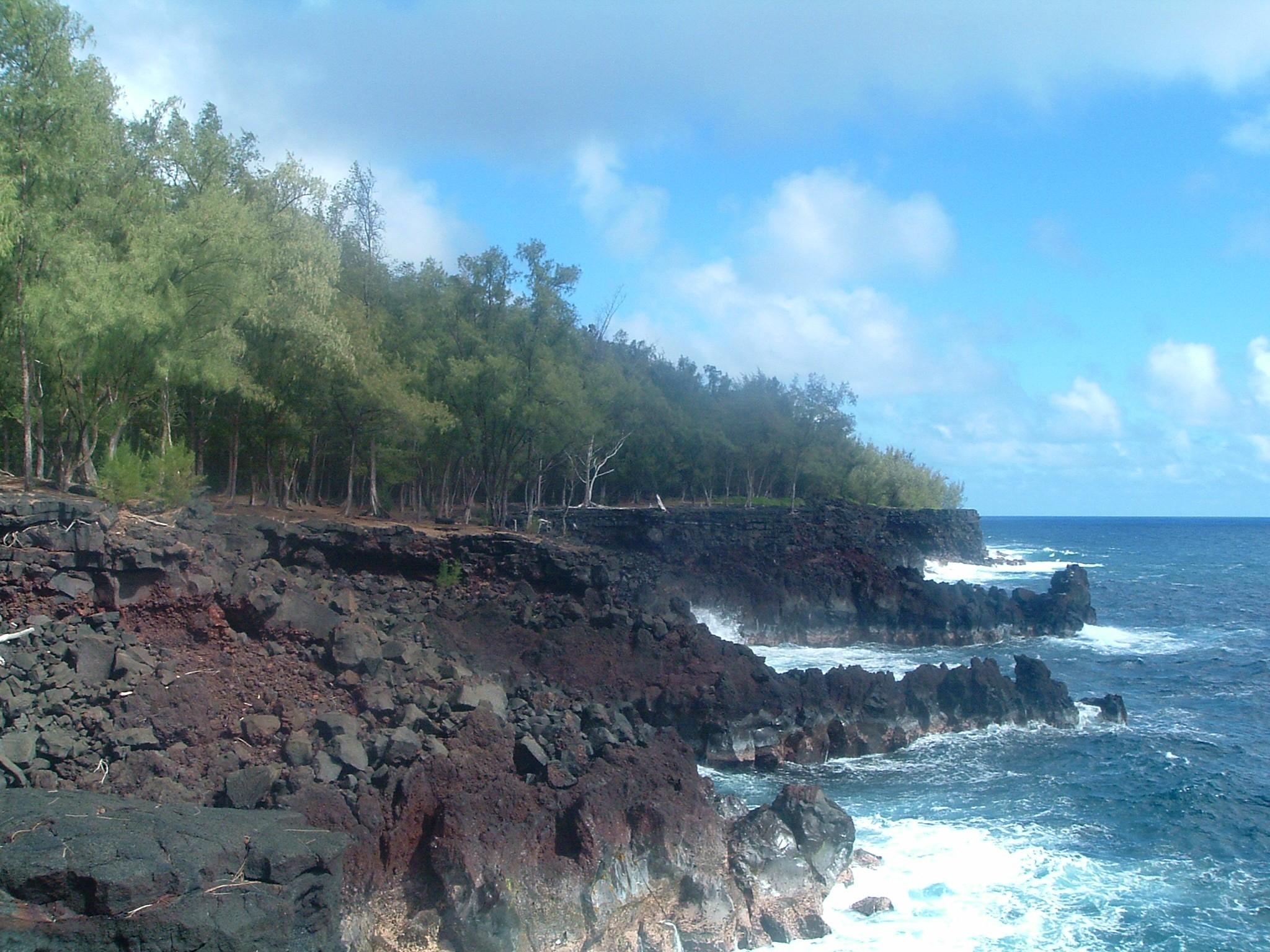 puna coast 2.JPG