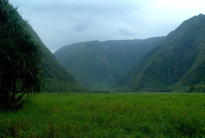 waimanu valley 2.JPG