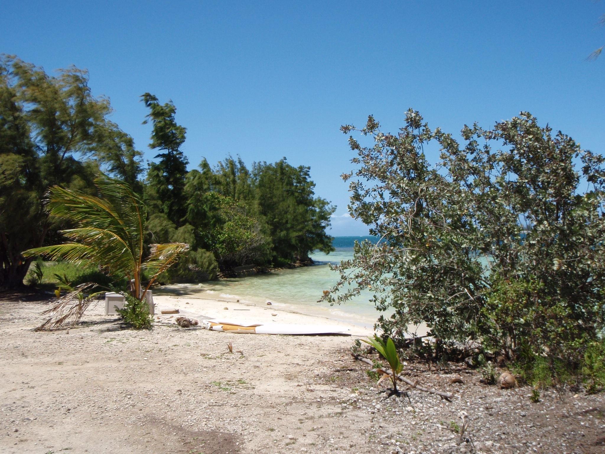 coconut beach.jpg
