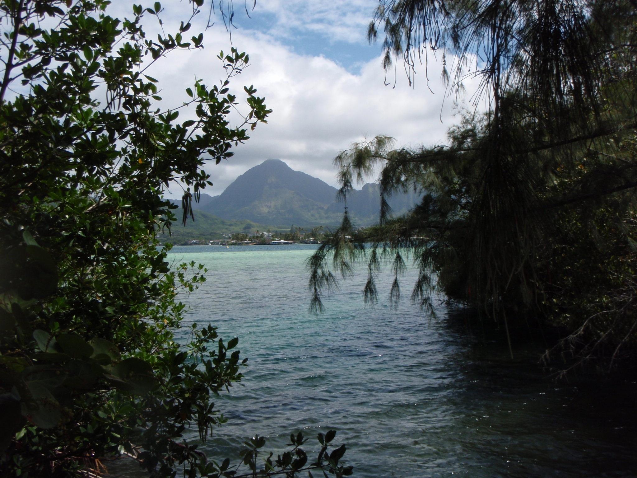 konahuanui from coconut.jpg