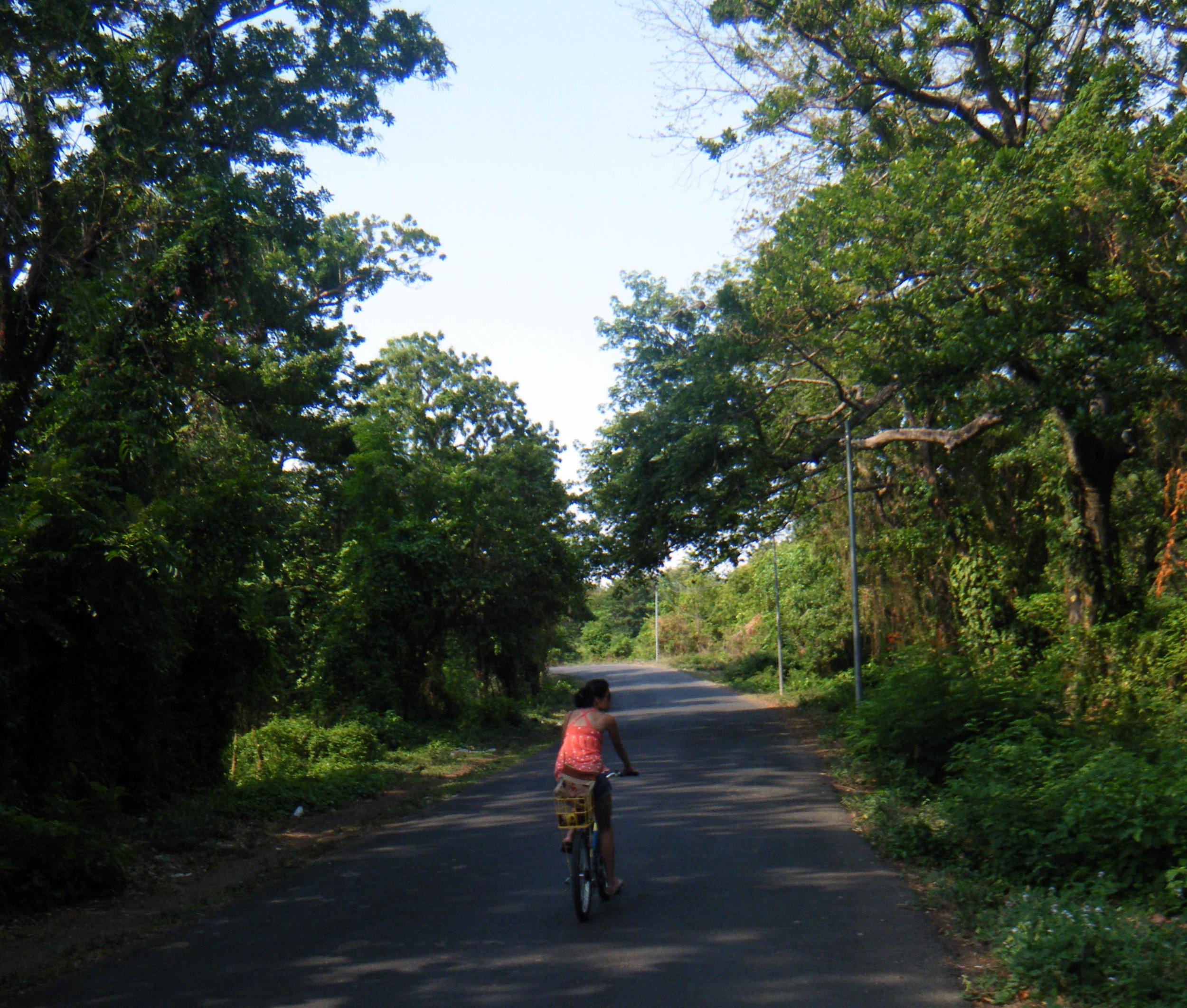 Asese road.jpg