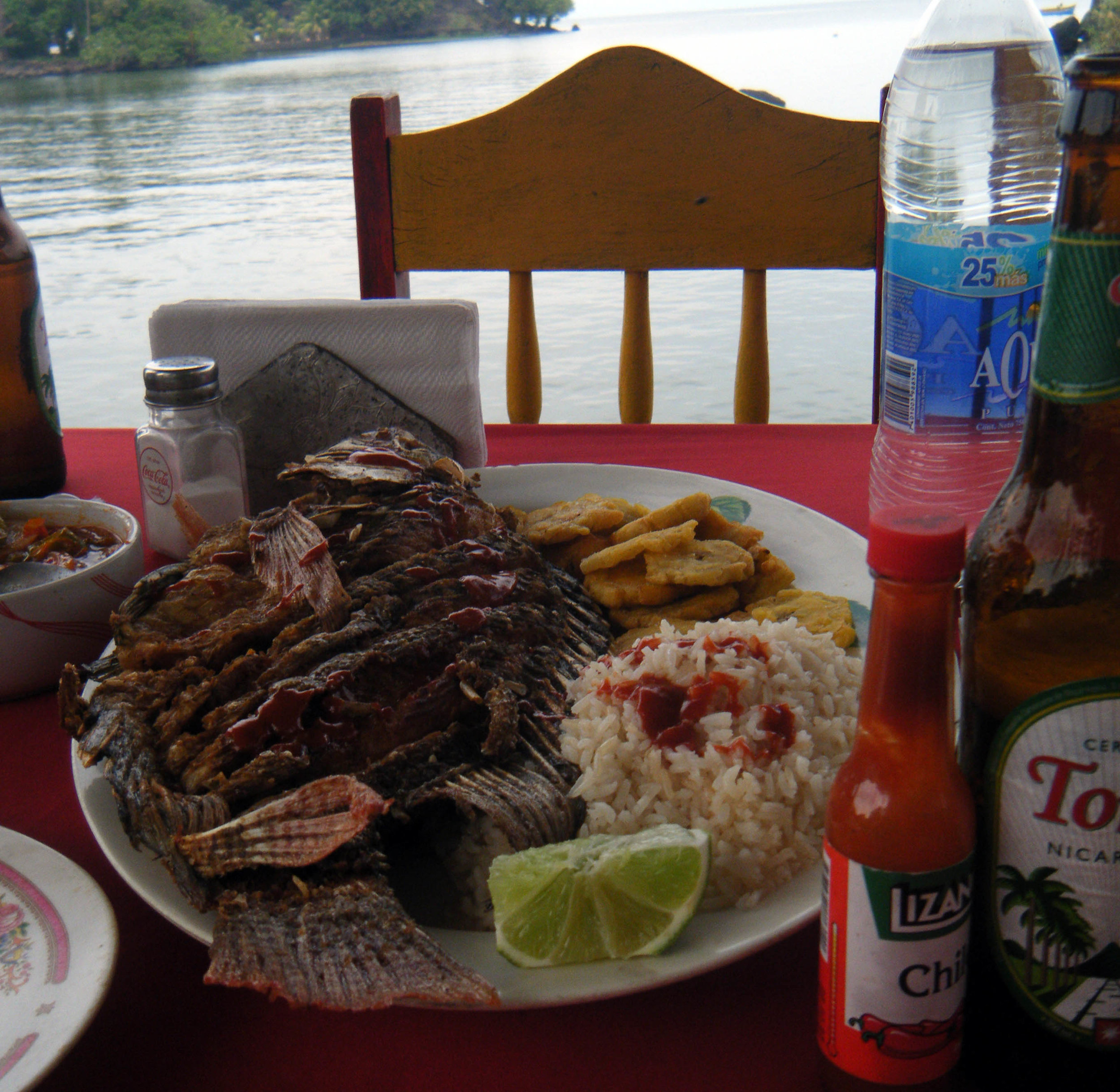 lake fish dinner.jpg