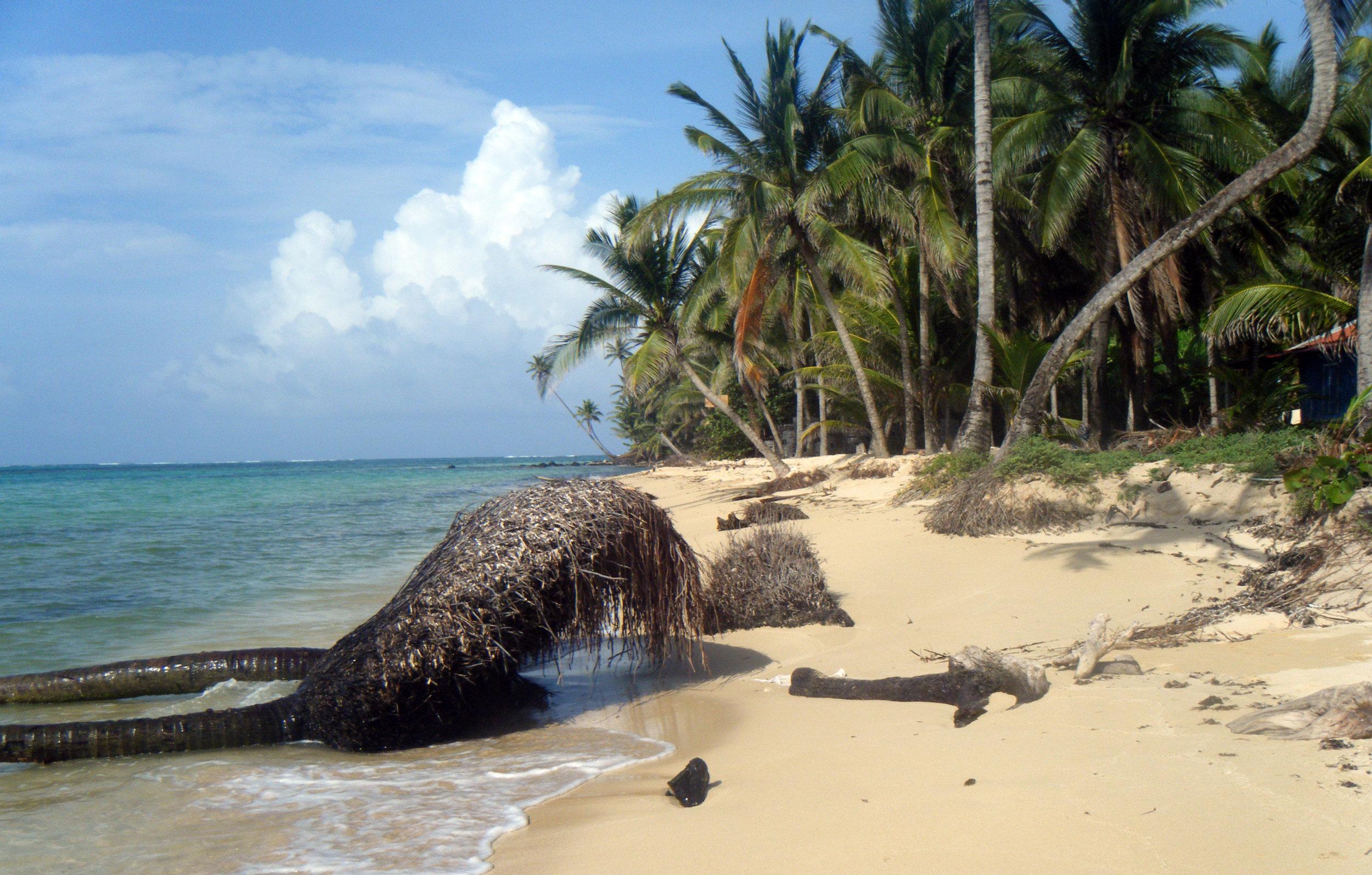 pristine LCI beach.jpg