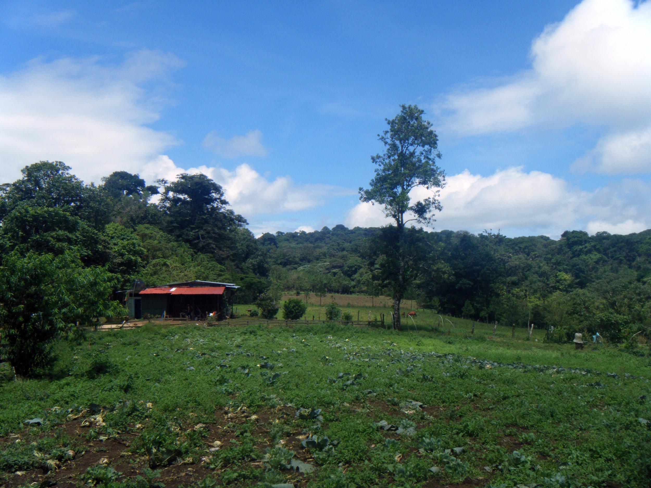 farm homestay.jpg