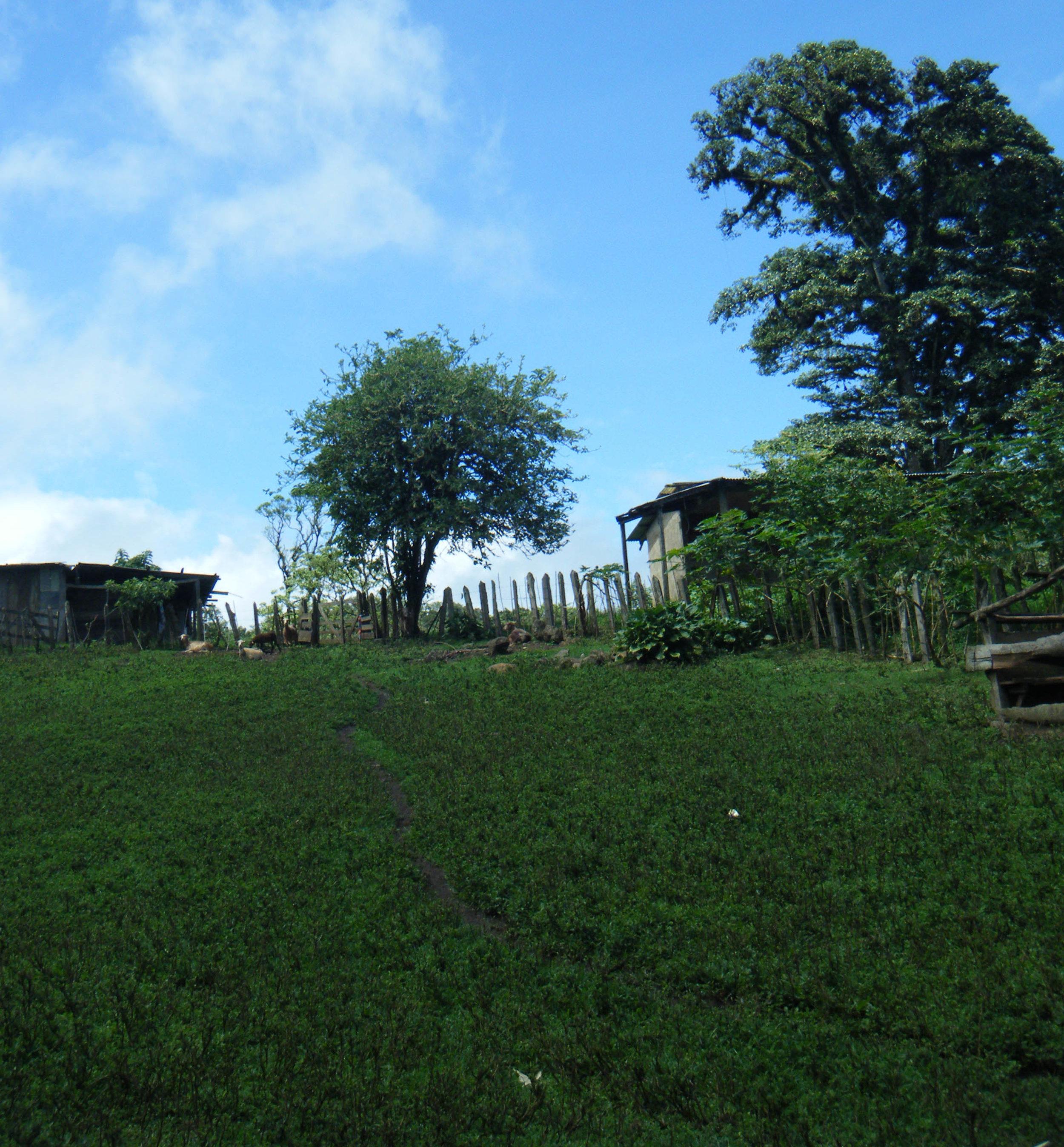 Reserva Miraflor.jpg