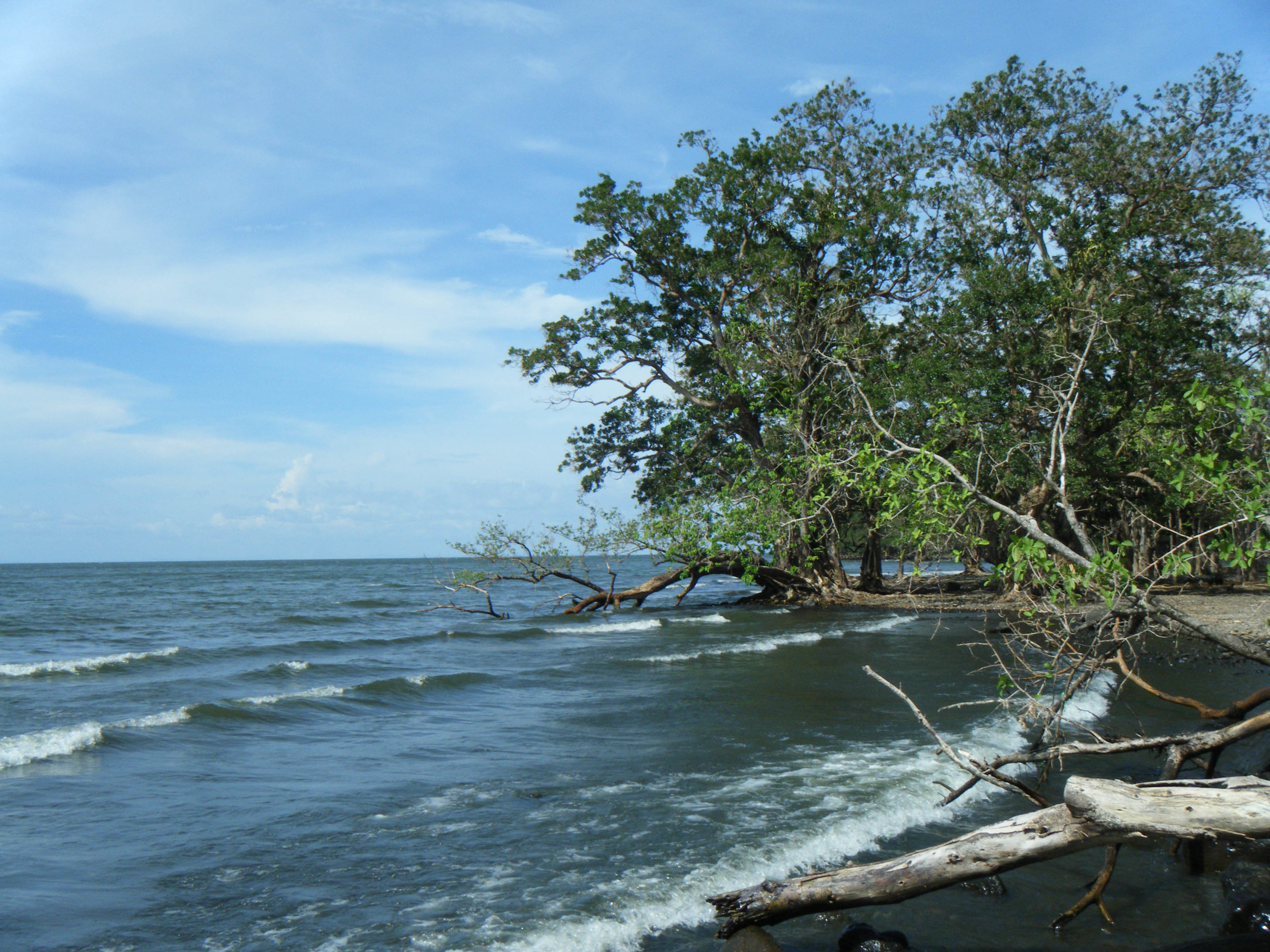 lonely coast of Ometepe.jpg
