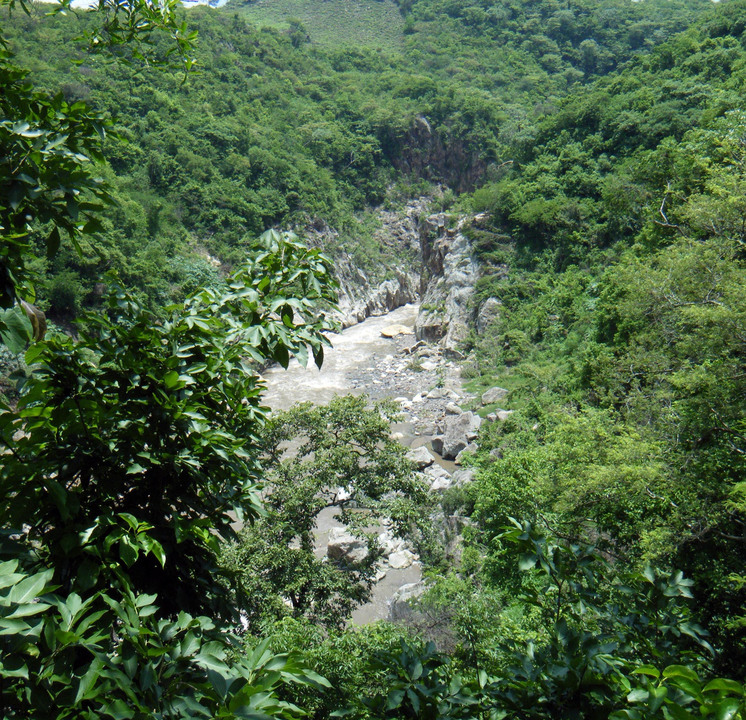 el rio coco.jpg