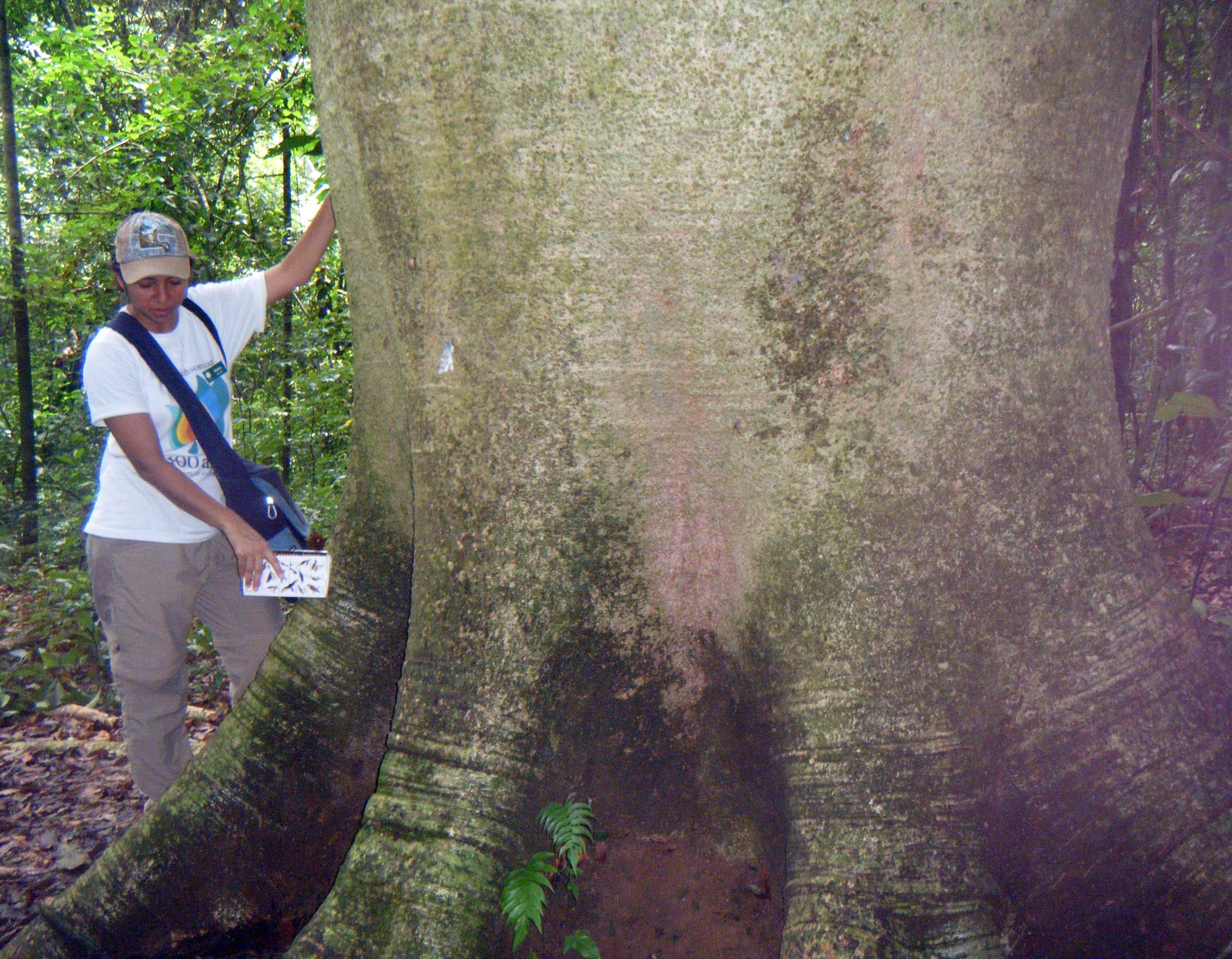 Melva and Elephant leg tree.jpg