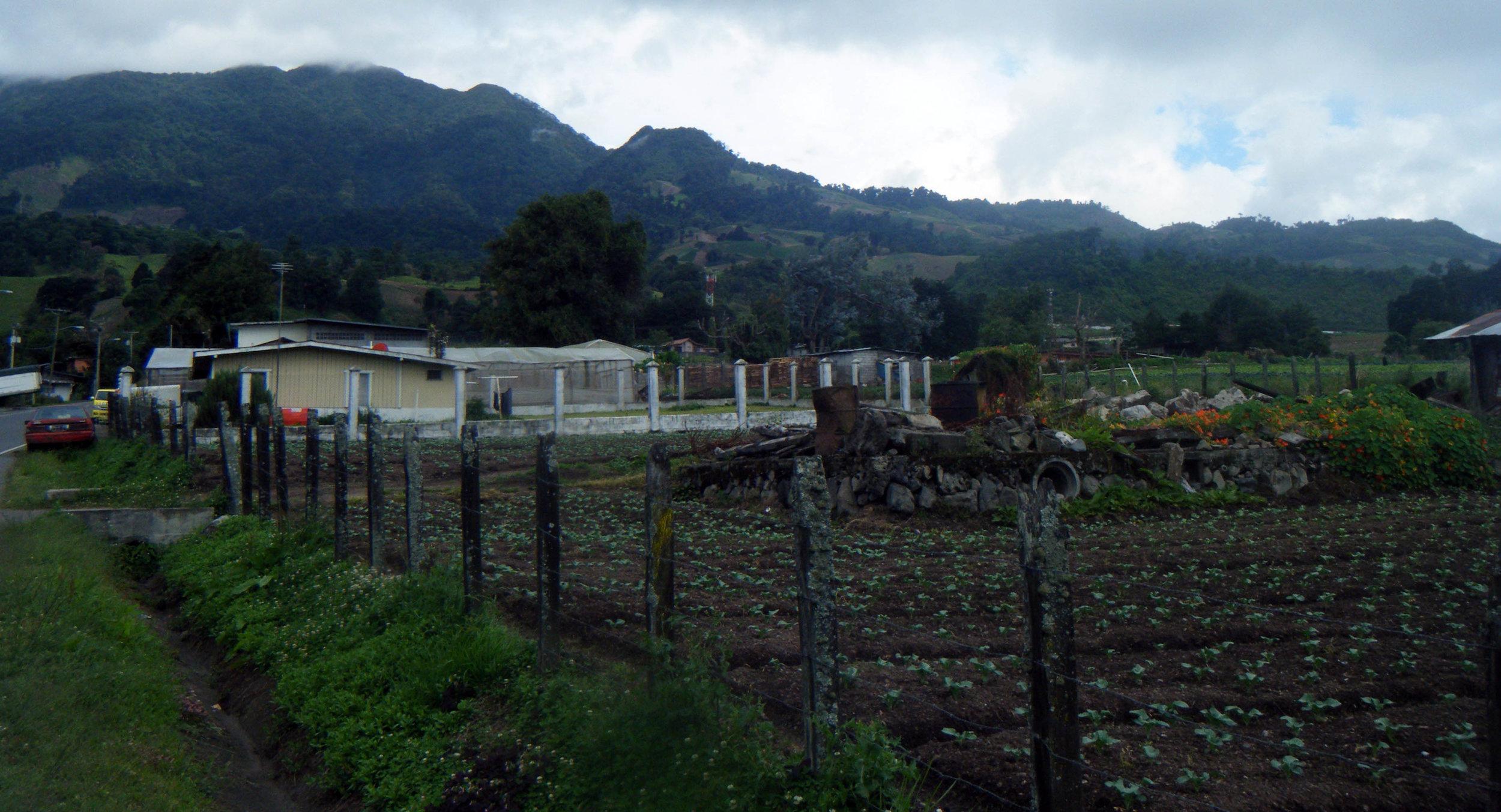 Cerro Punta area 7-19-12.jpg