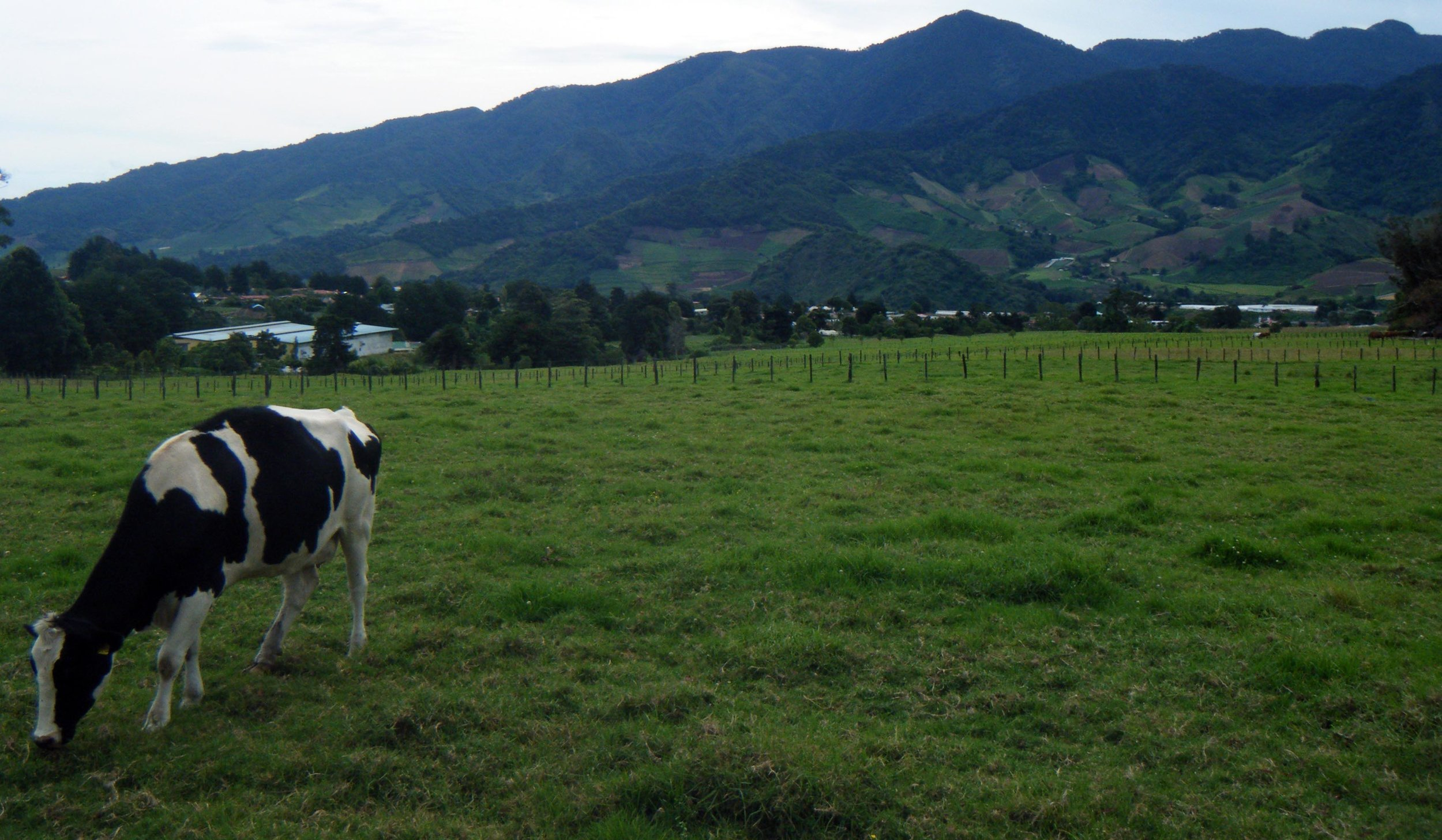 farm near Cerro Punta.jpg