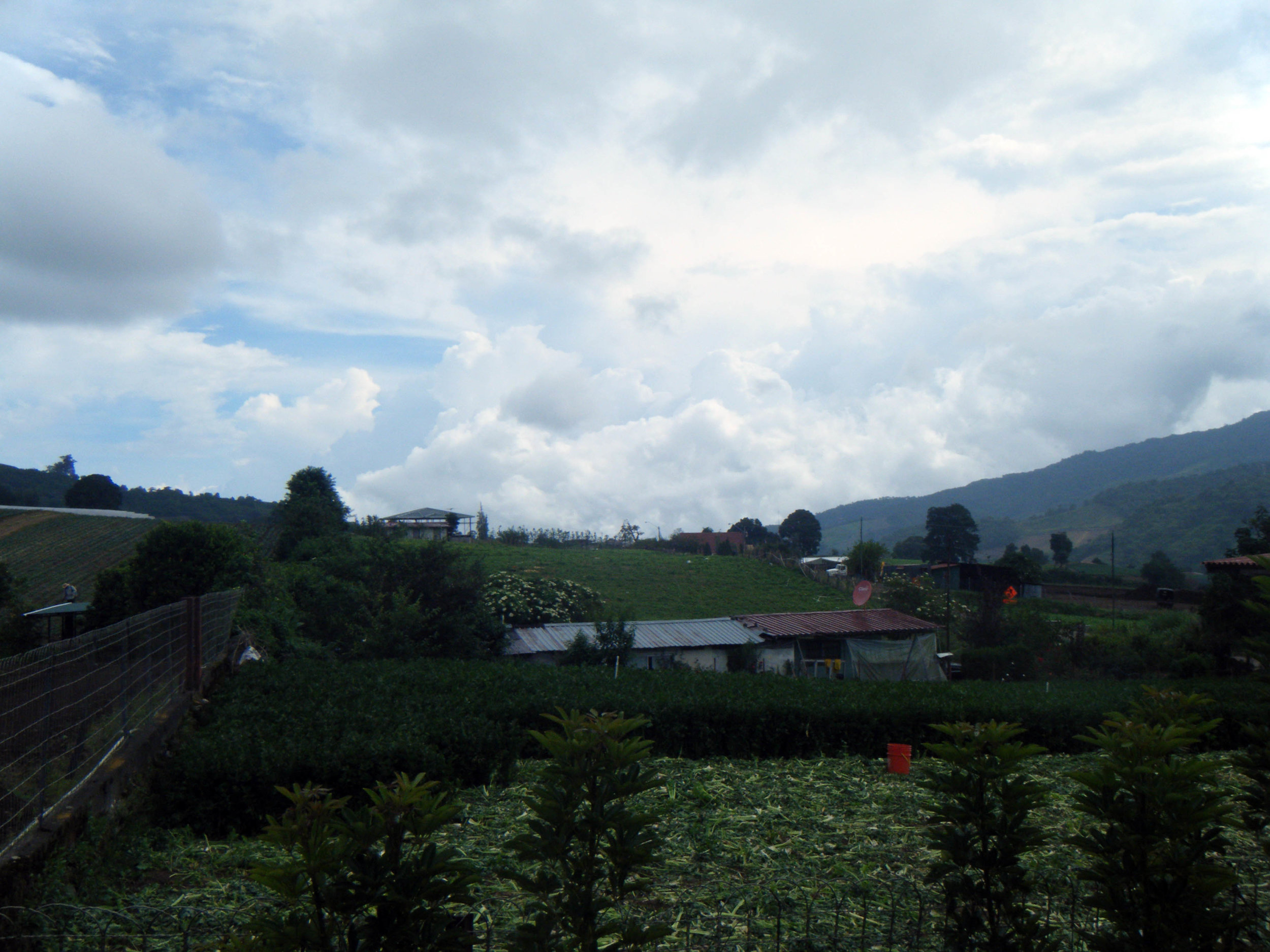 farms near Cerro Punta.jpg