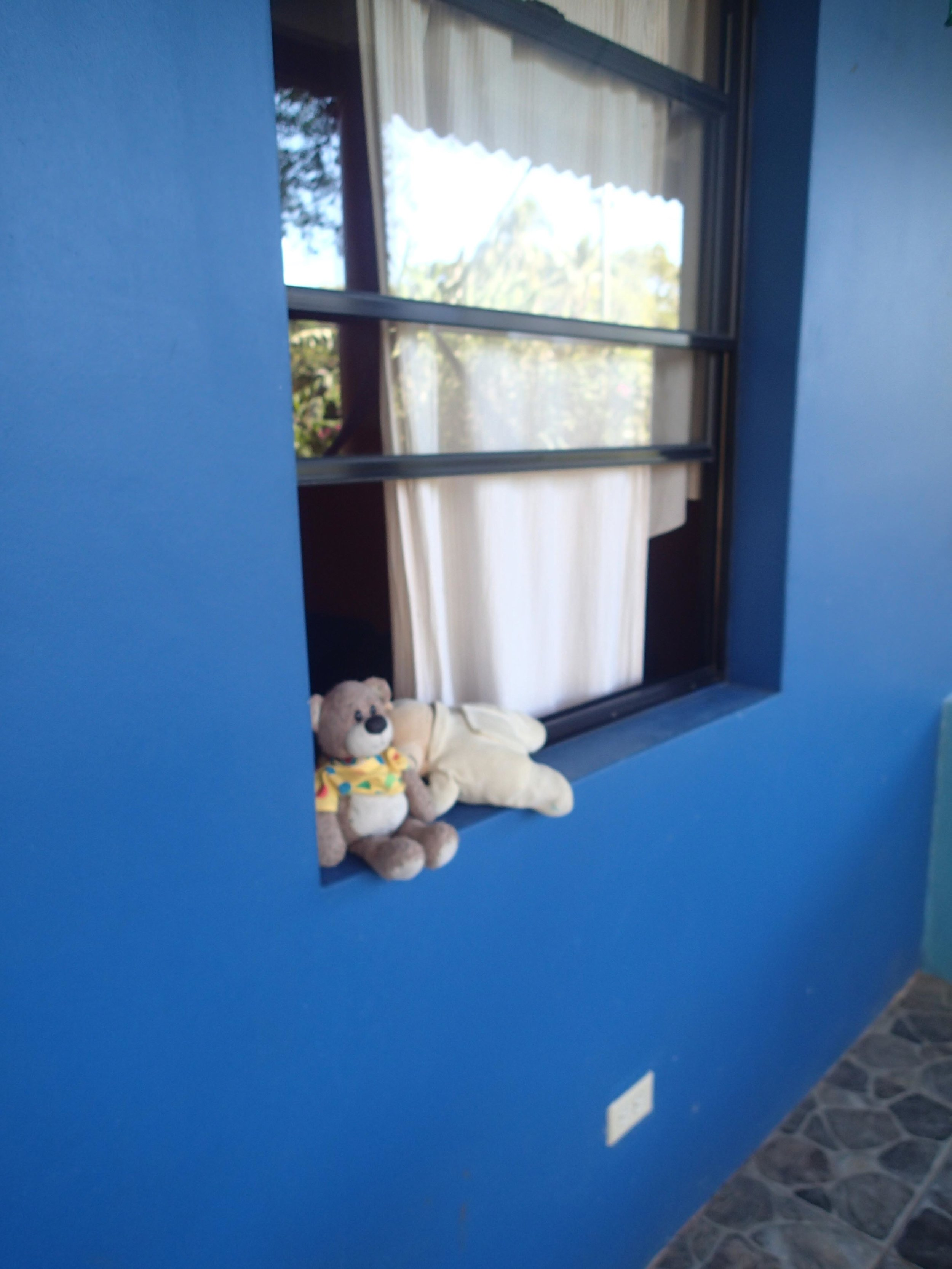 baby bears at El Tunco.jpg