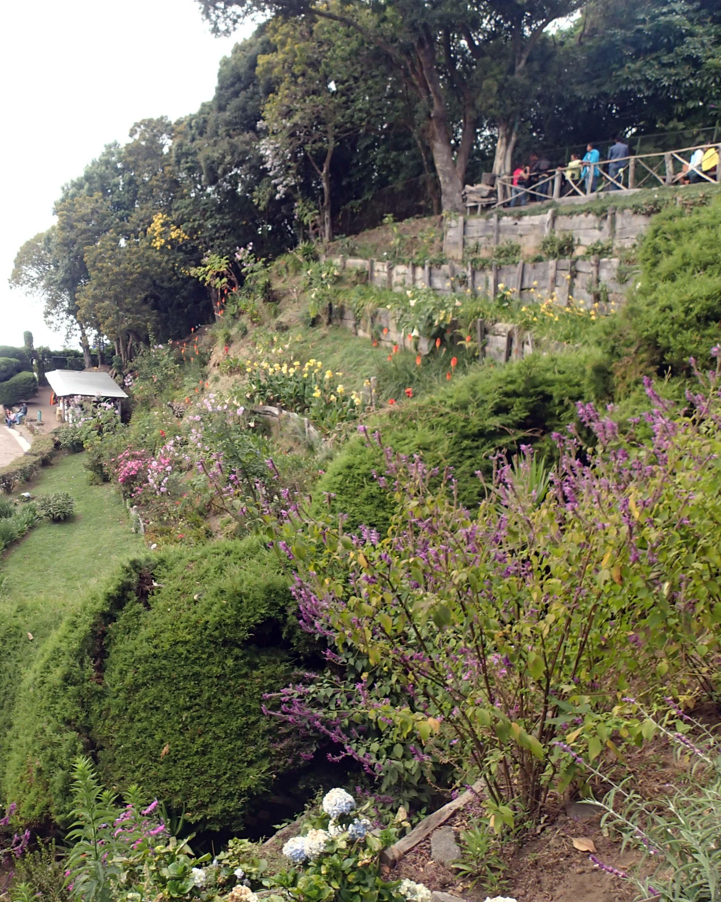 NP gardens.jpg