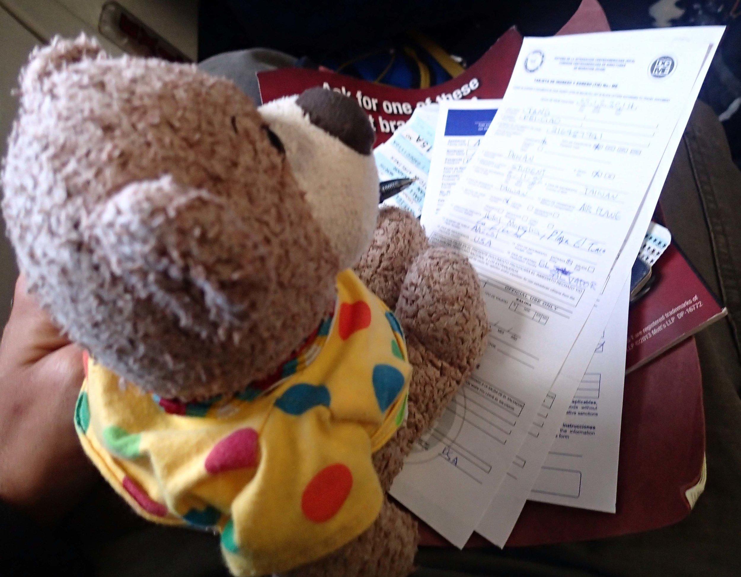 travel bear.jpg
