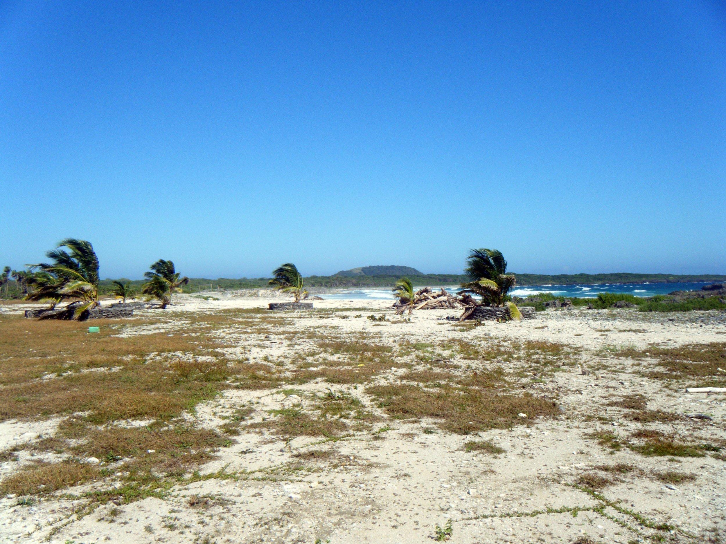 Utila beach.jpg