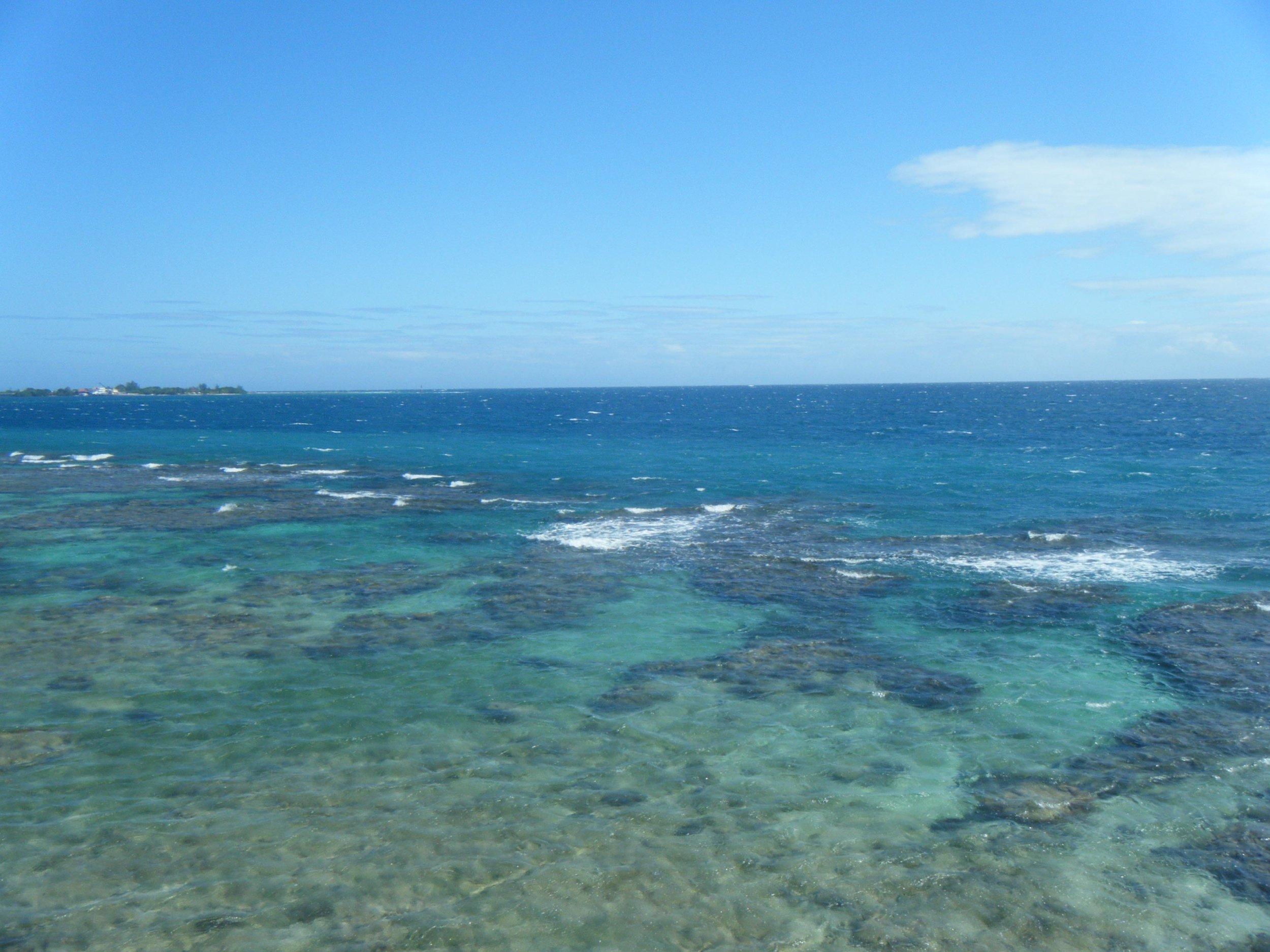 Utila reefs.jpg