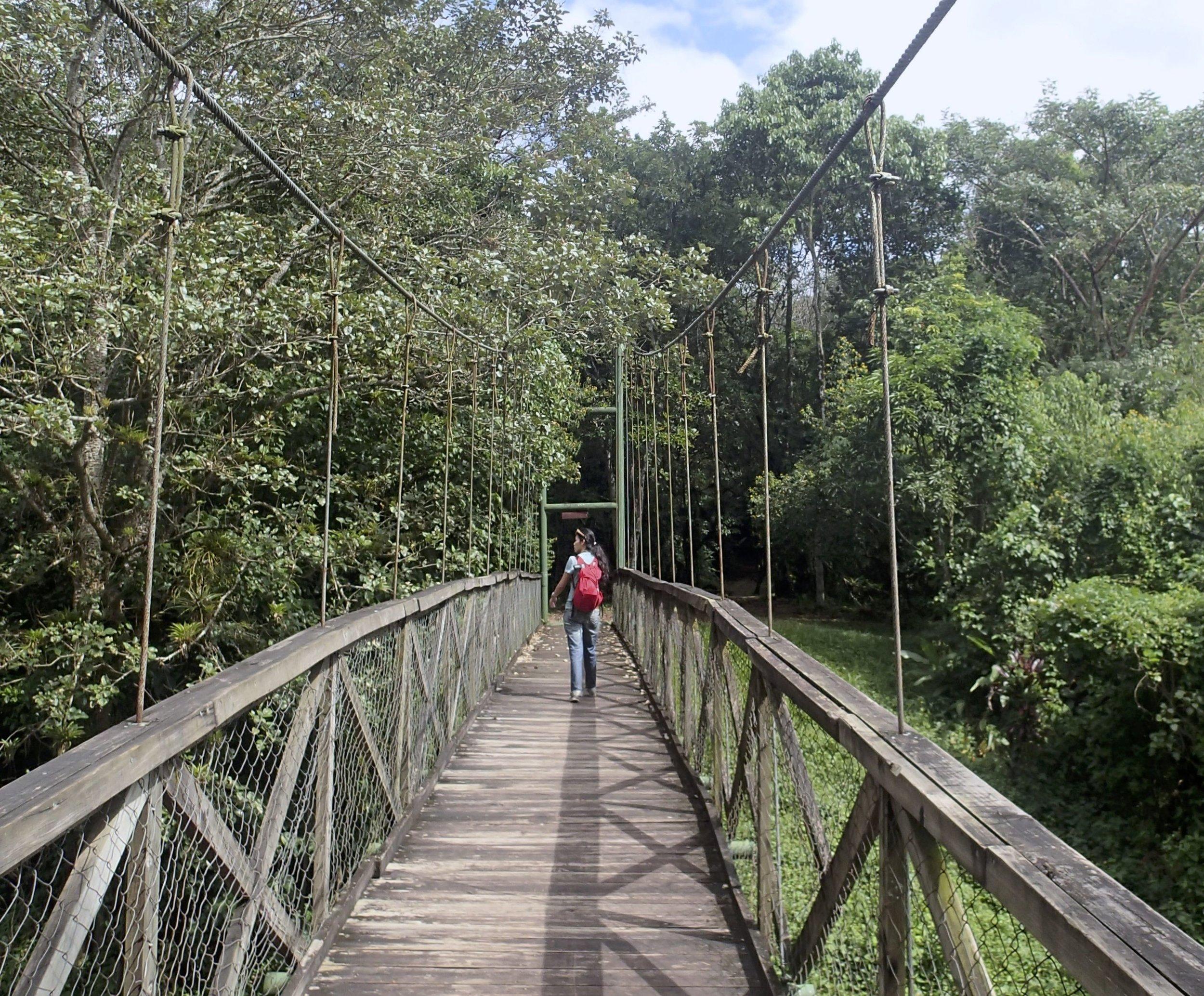 Pei-Ciao on suspension bridge 12-20-13.jpg