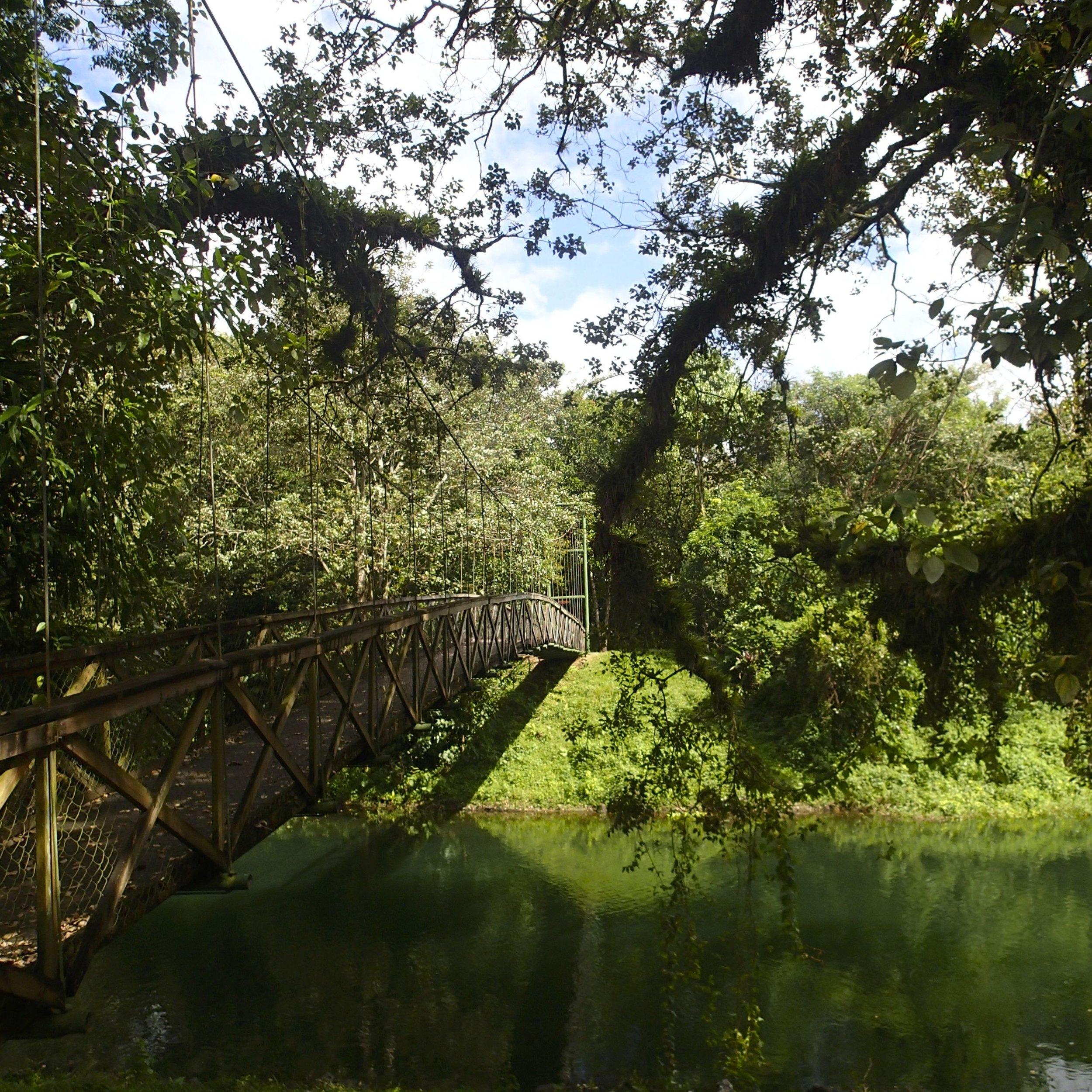 puente colgante.jpg