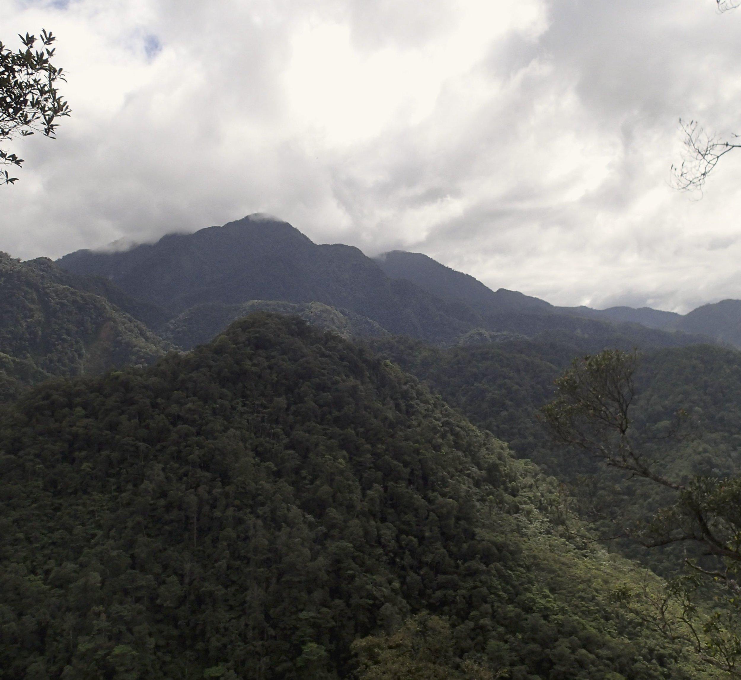 El Sinai trail.jpg