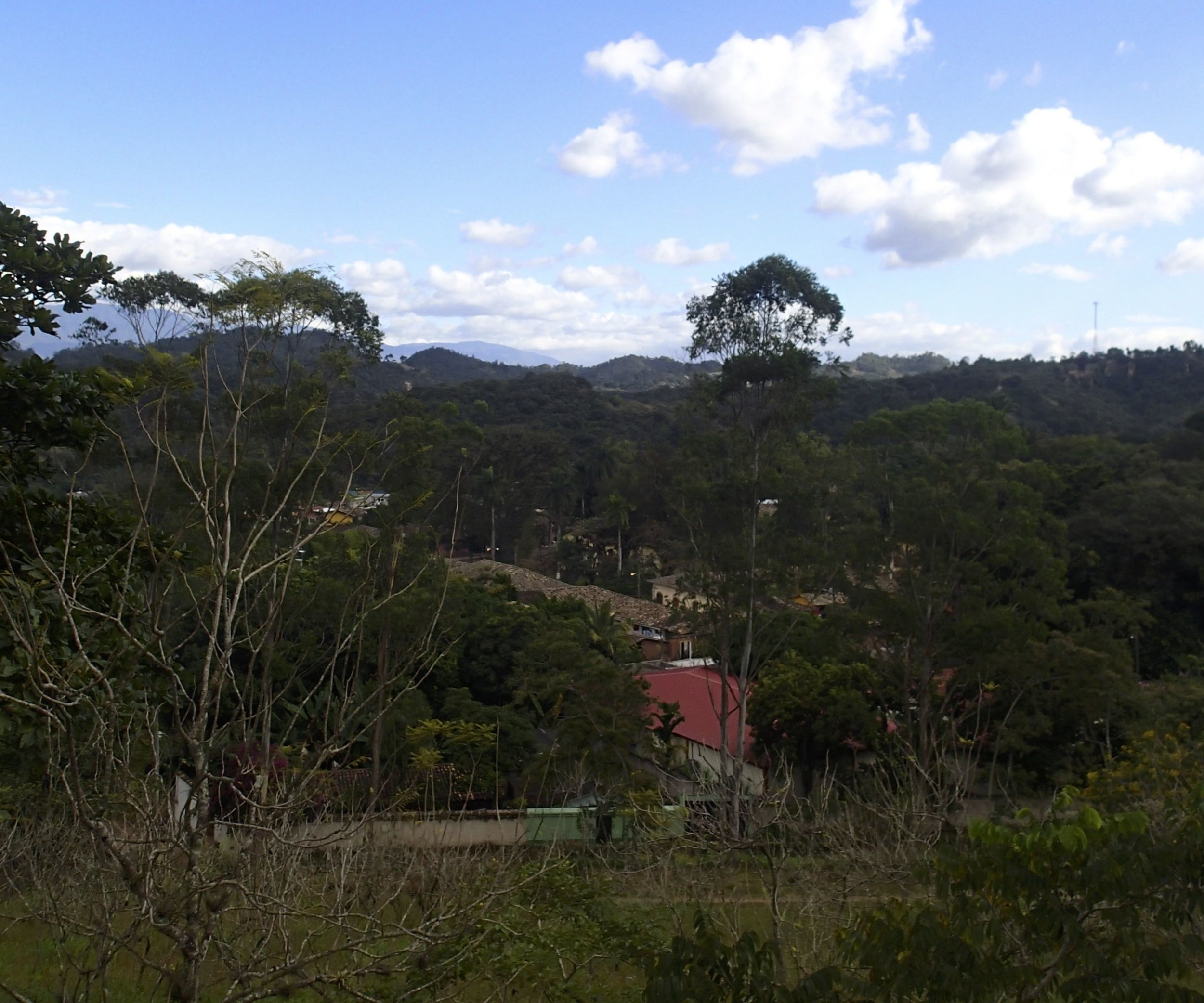 view from the fort.jpg