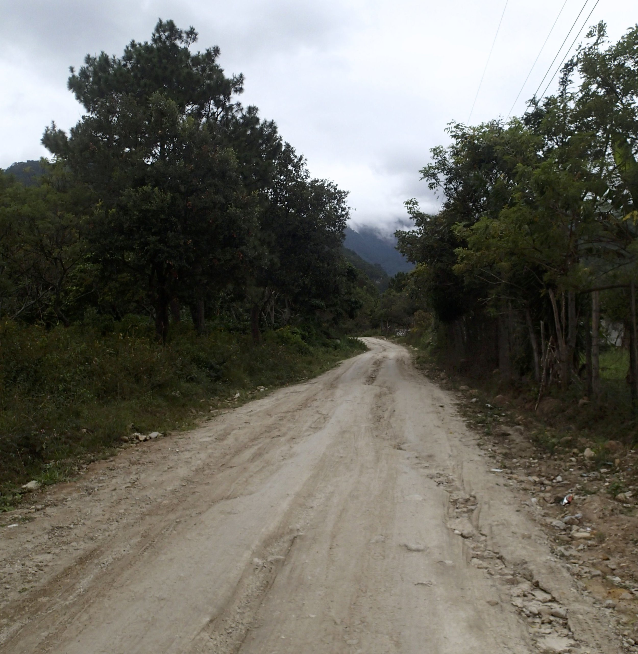 lonely road.jpg