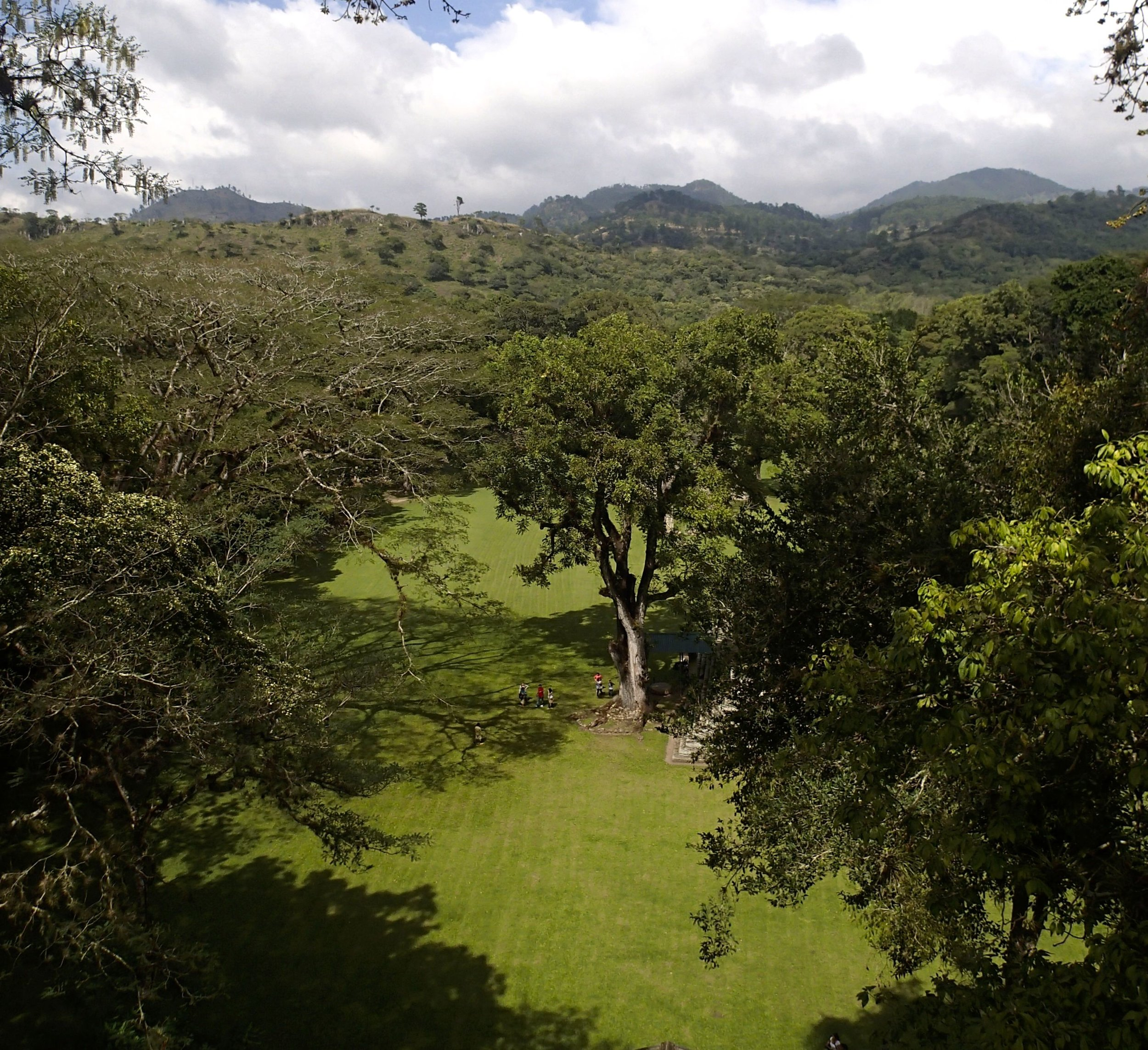 view from Copan.jpg