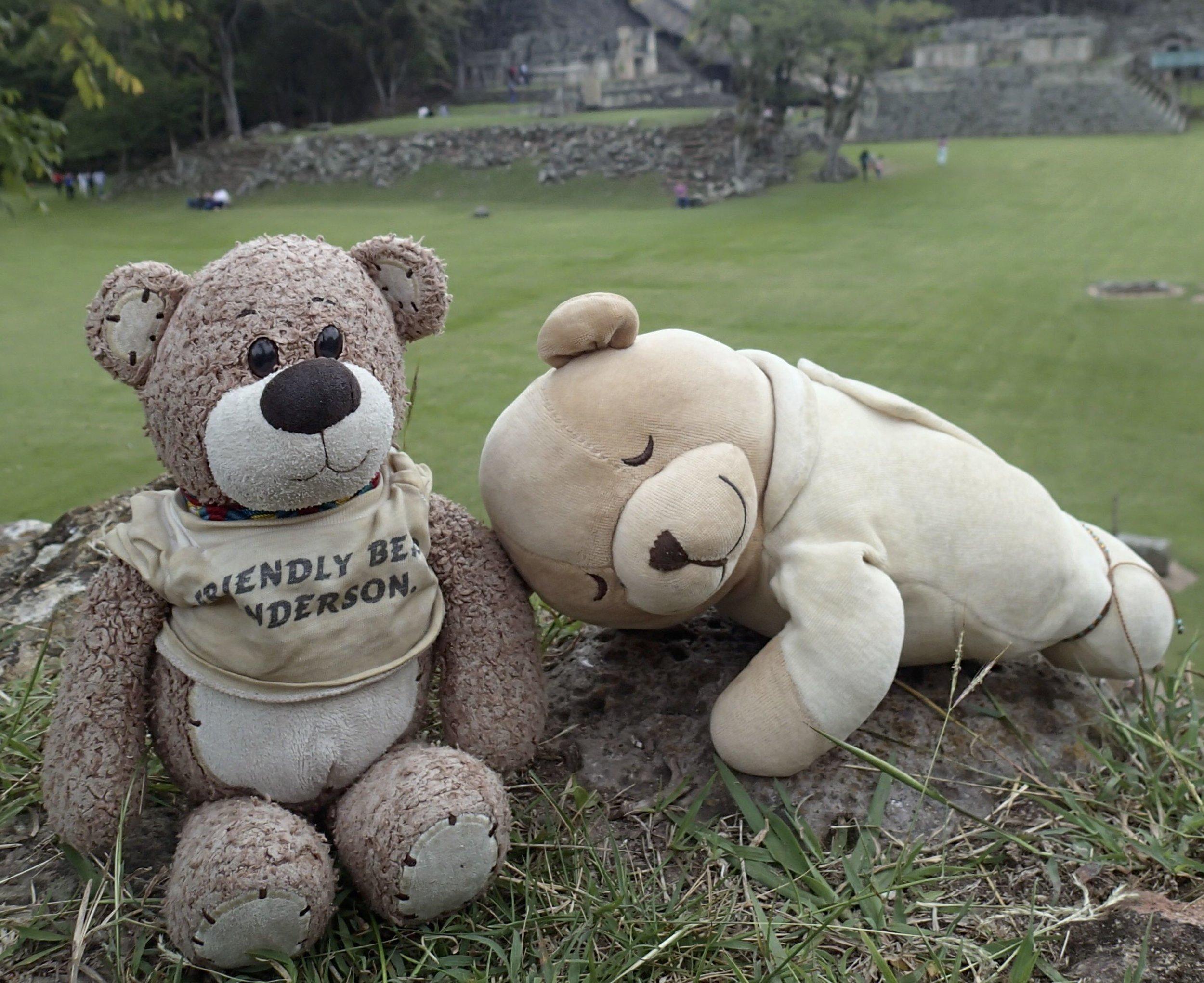 bearbies in Copan 12-2013.jpg