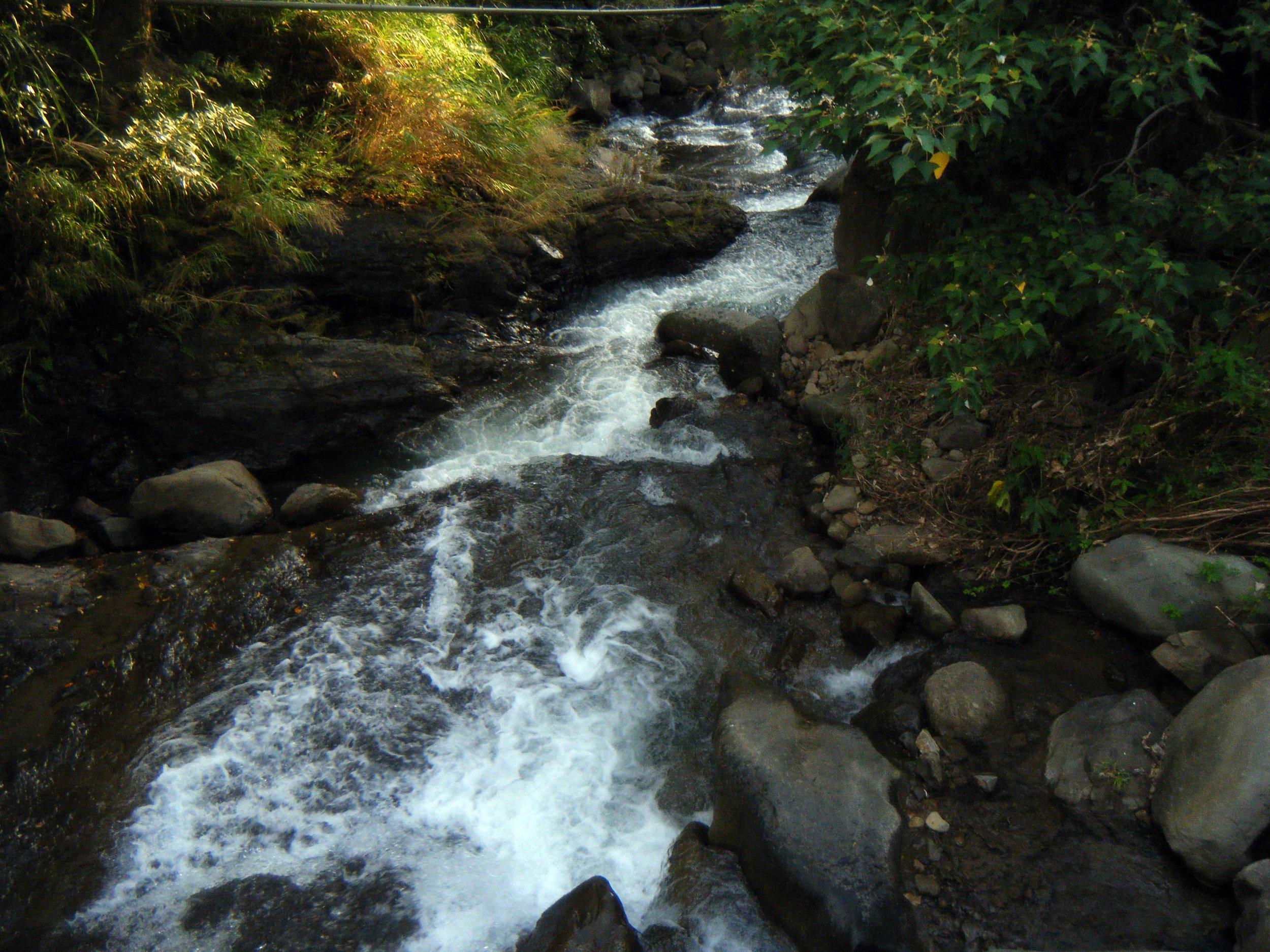 Lilong stream.jpg