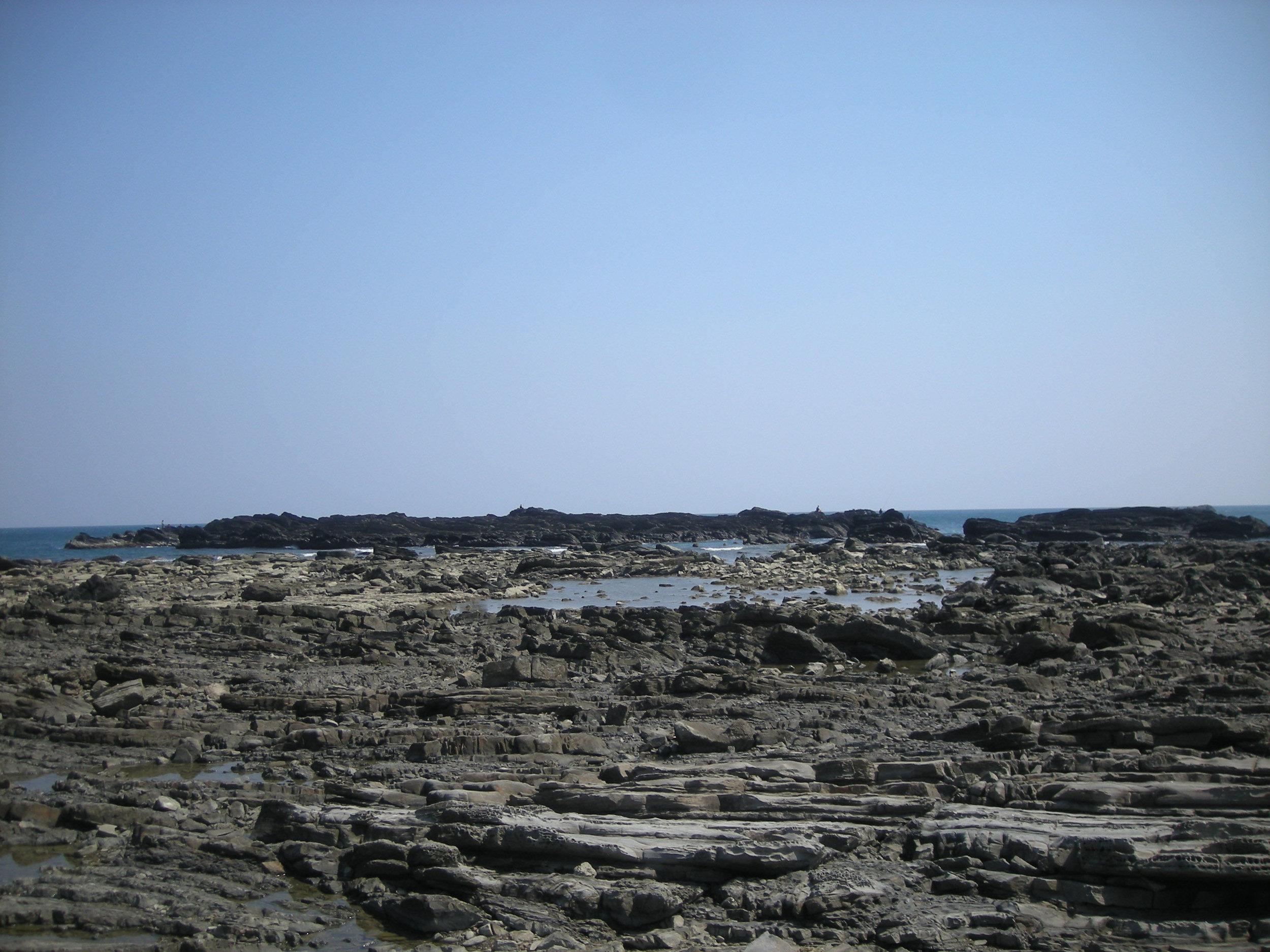 intertidal area.jpg