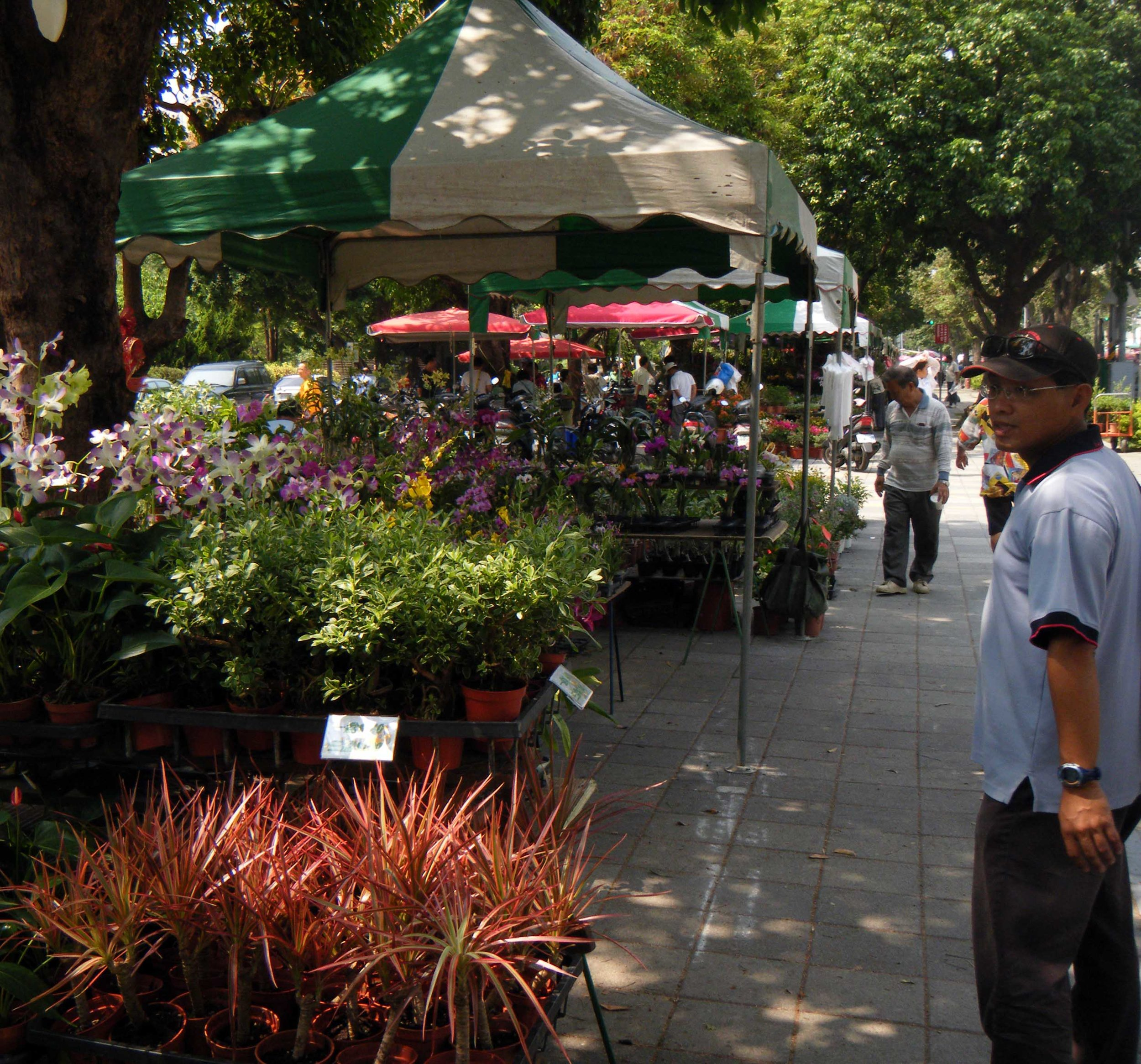 Pi at the flower market.jpg