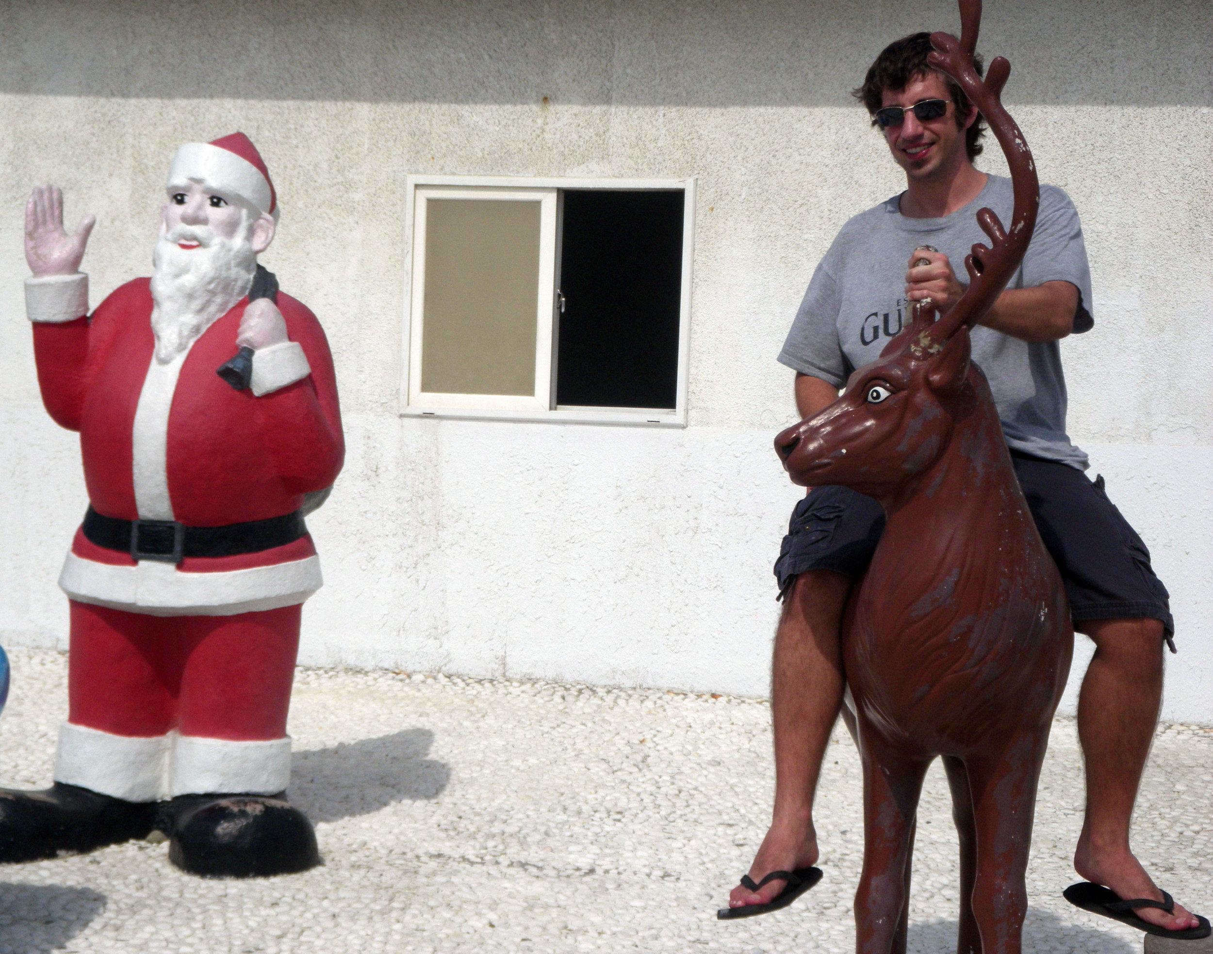 on the reindeer.jpg