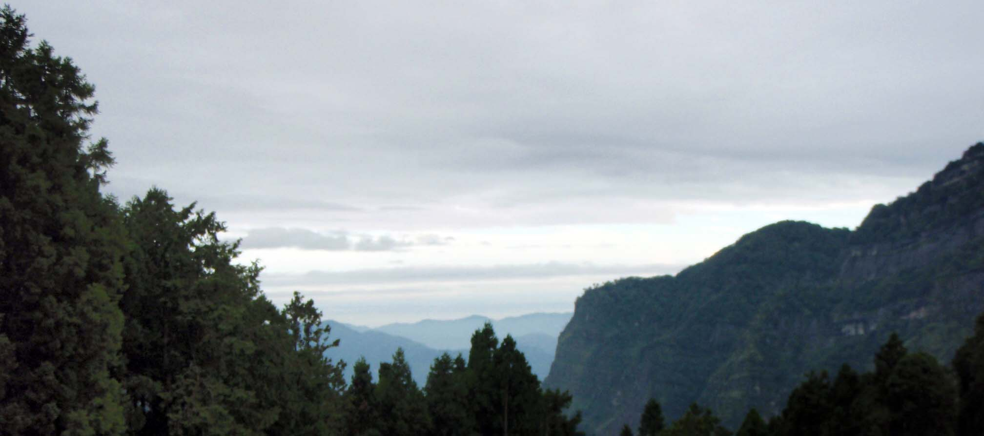 view from Alishan town.jpg