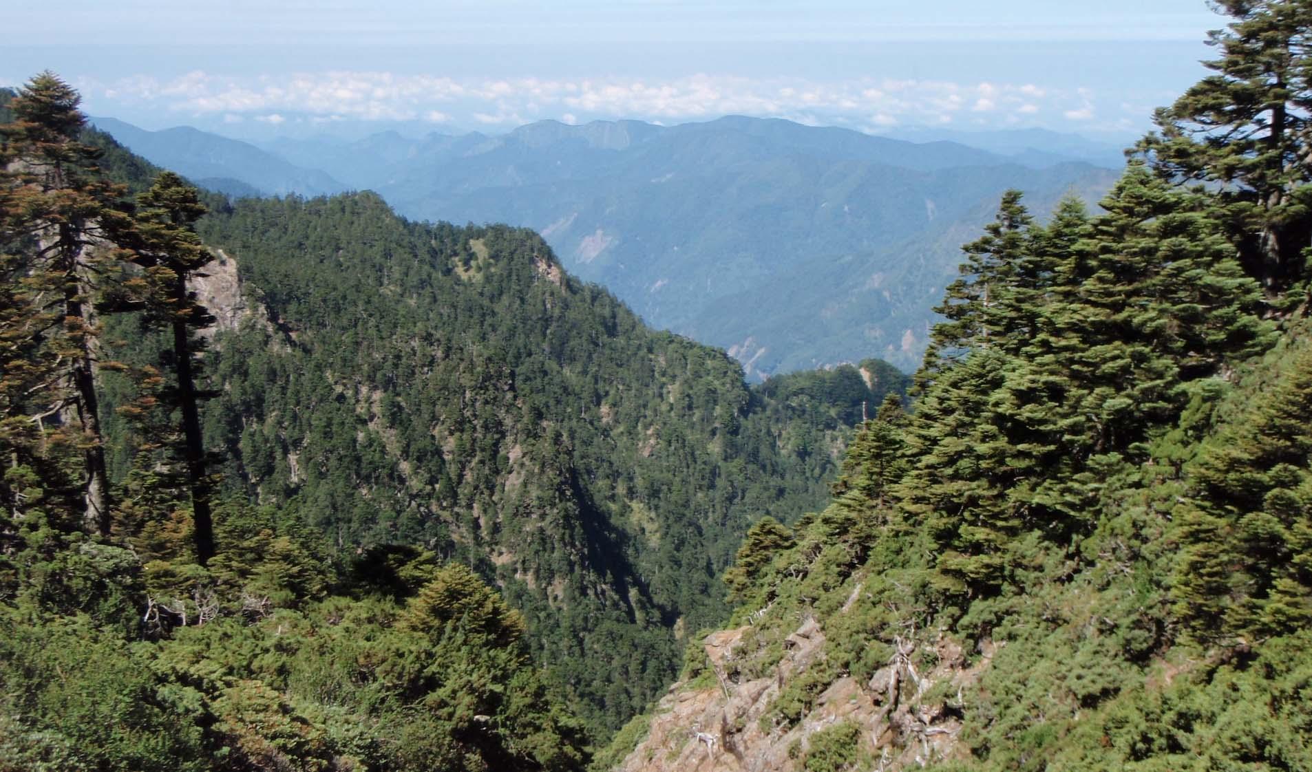 Yushan National Park 6.jpg