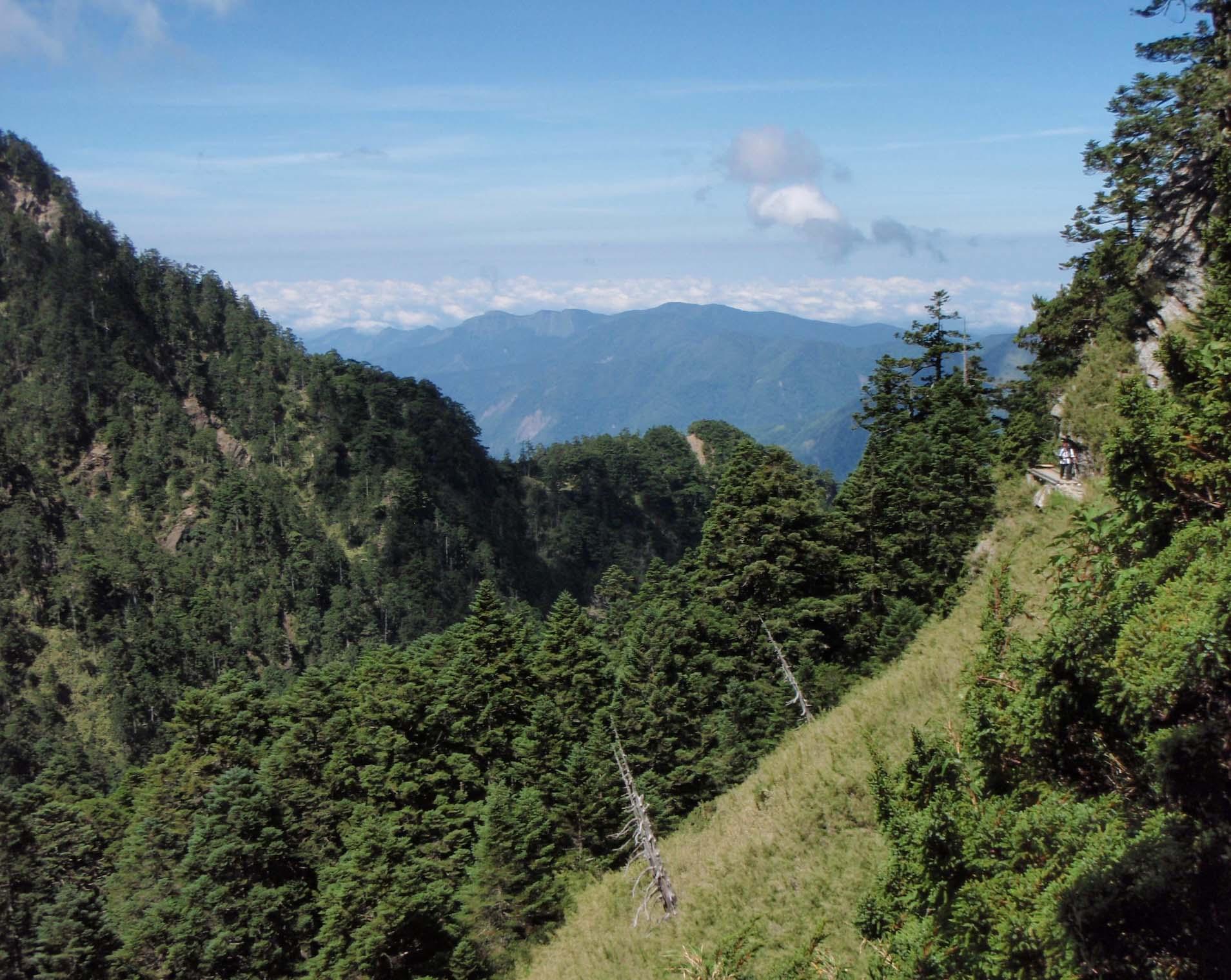 Yushan National Park 9.jpg
