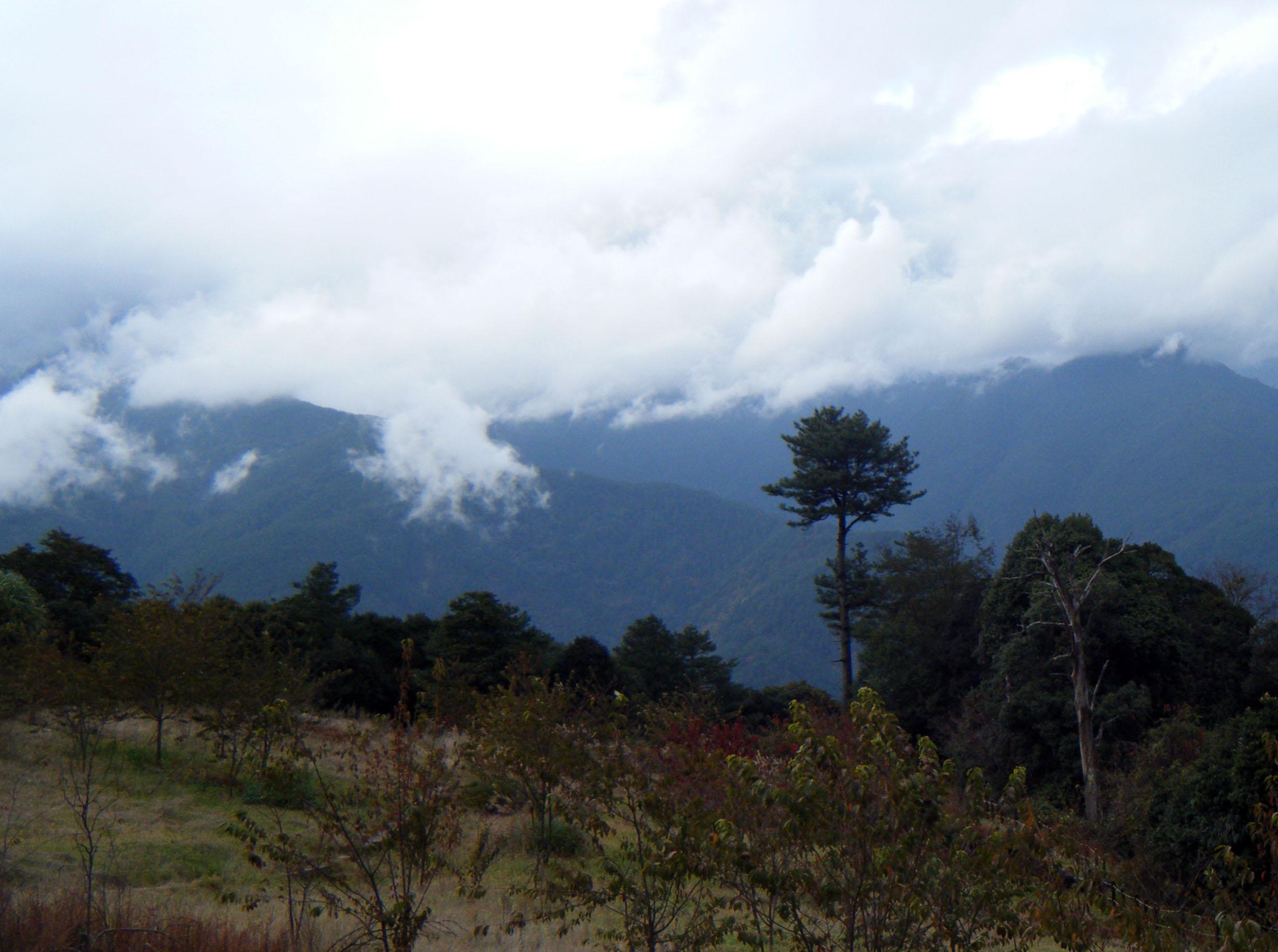 Lishan hike 12-31-11.jpg