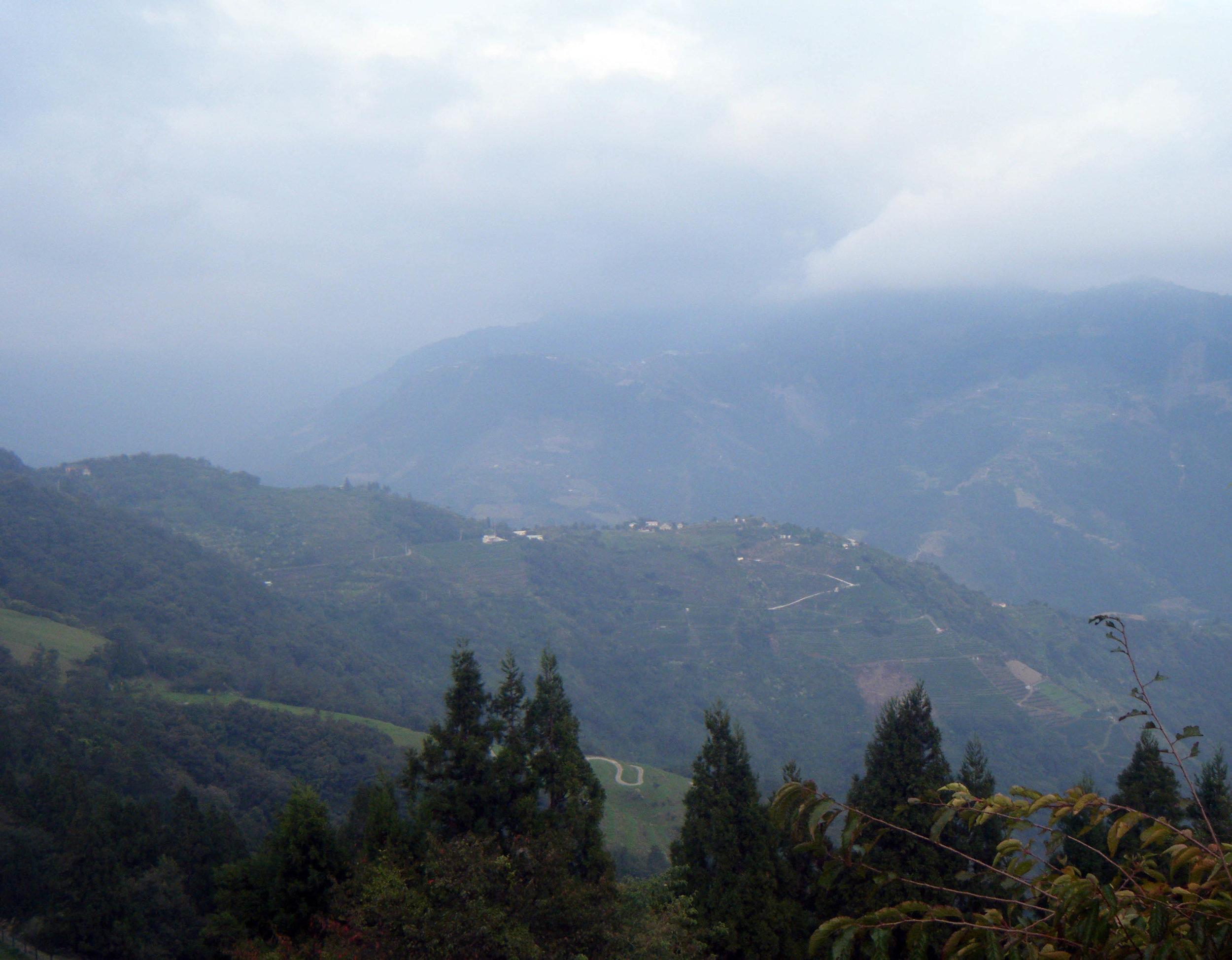 Cingjing Farm 5.jpg