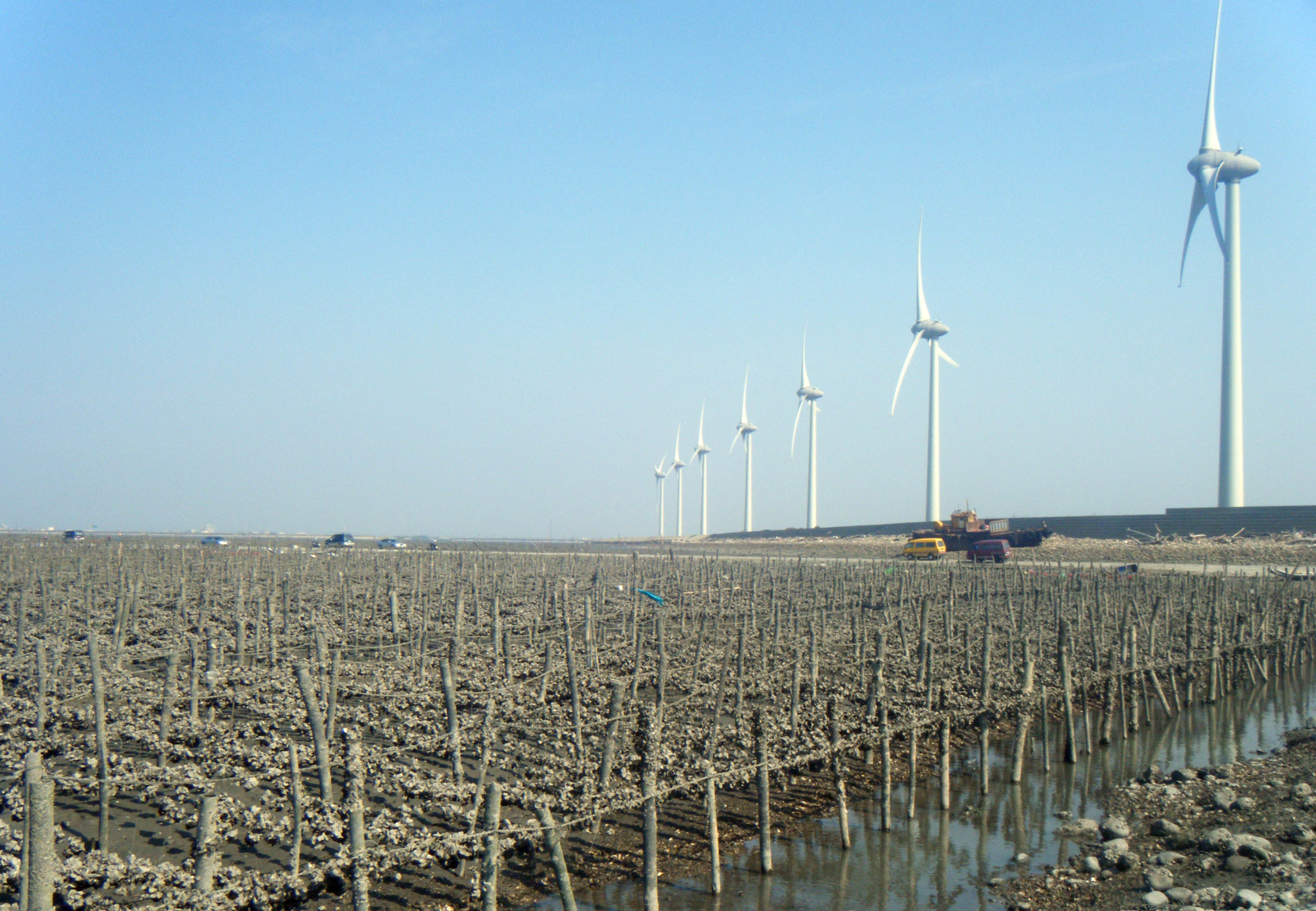 oyster culture and wind farm.jpg
