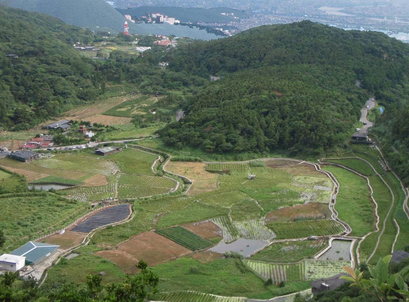 Yangmingshan farm.jpg