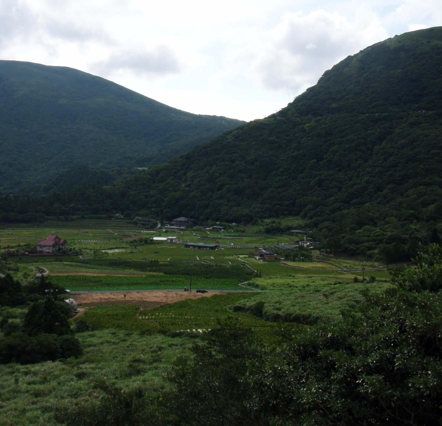 Yangmingshan farmland.jpg