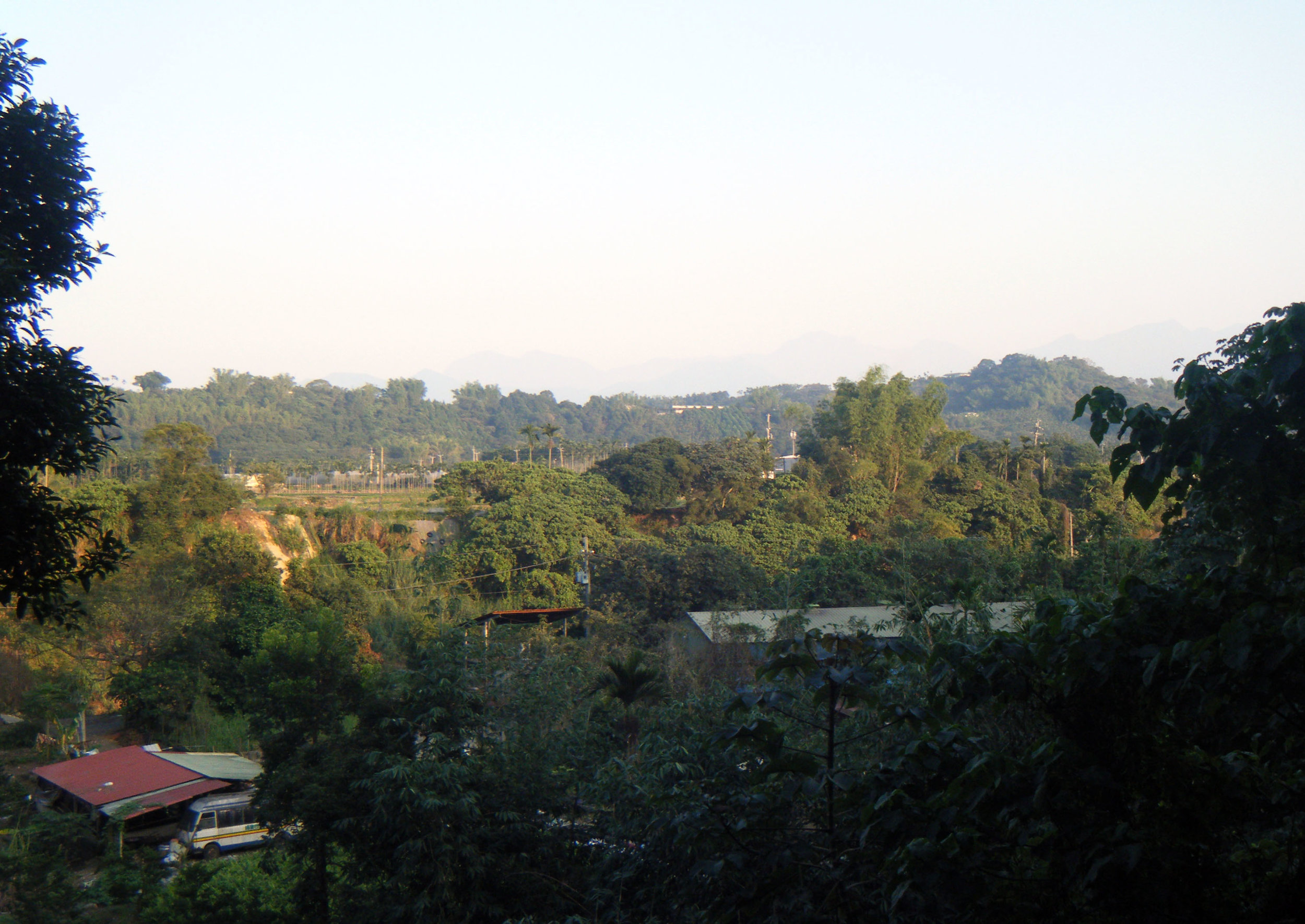 view from Tai Da forest.jpg